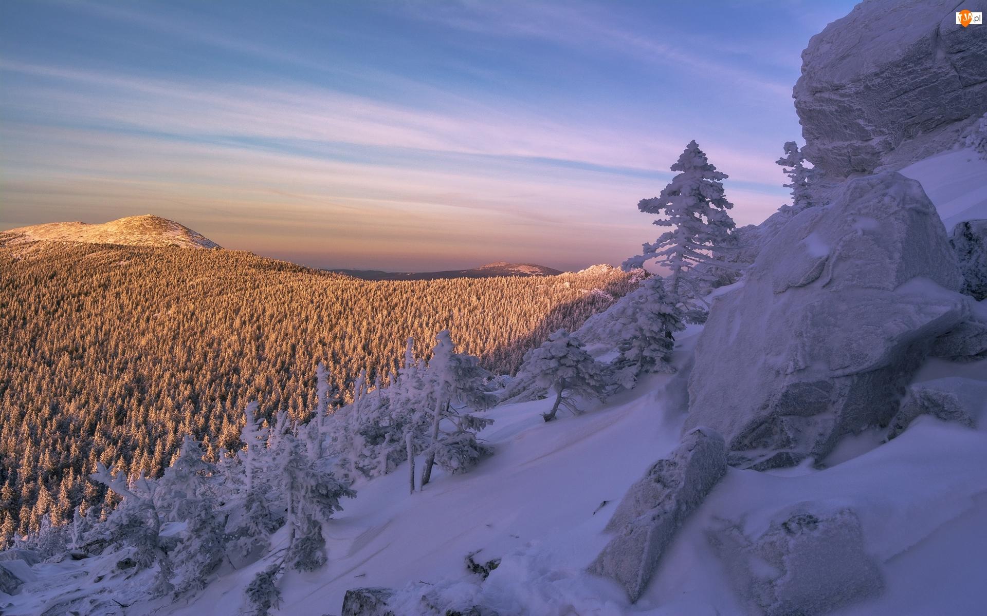Skały, Zima, Góry, Las