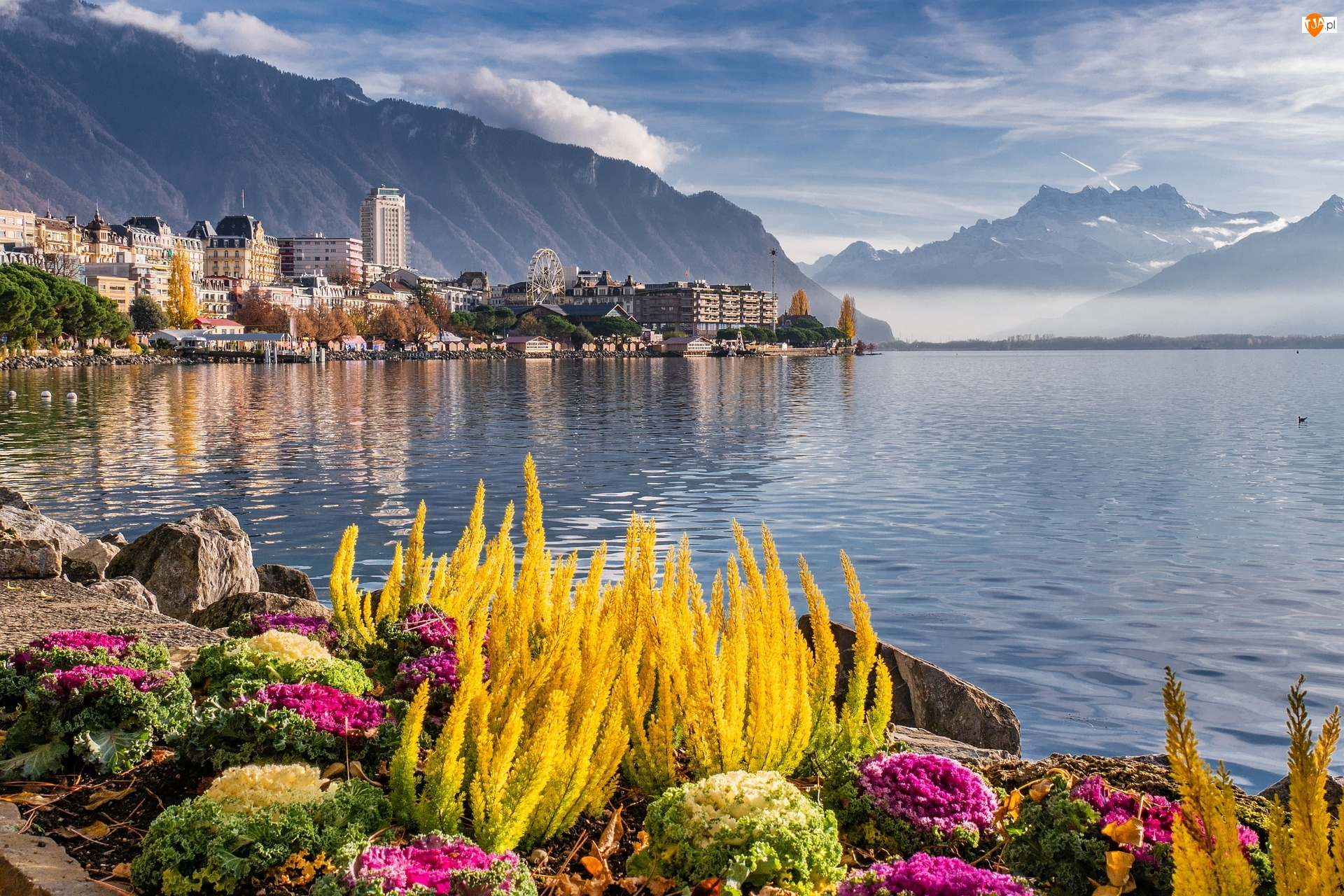 Rośliny, Klomb, Szwajcaria, Jezioro Genewskie, Montreux, Krajobraz, Góry