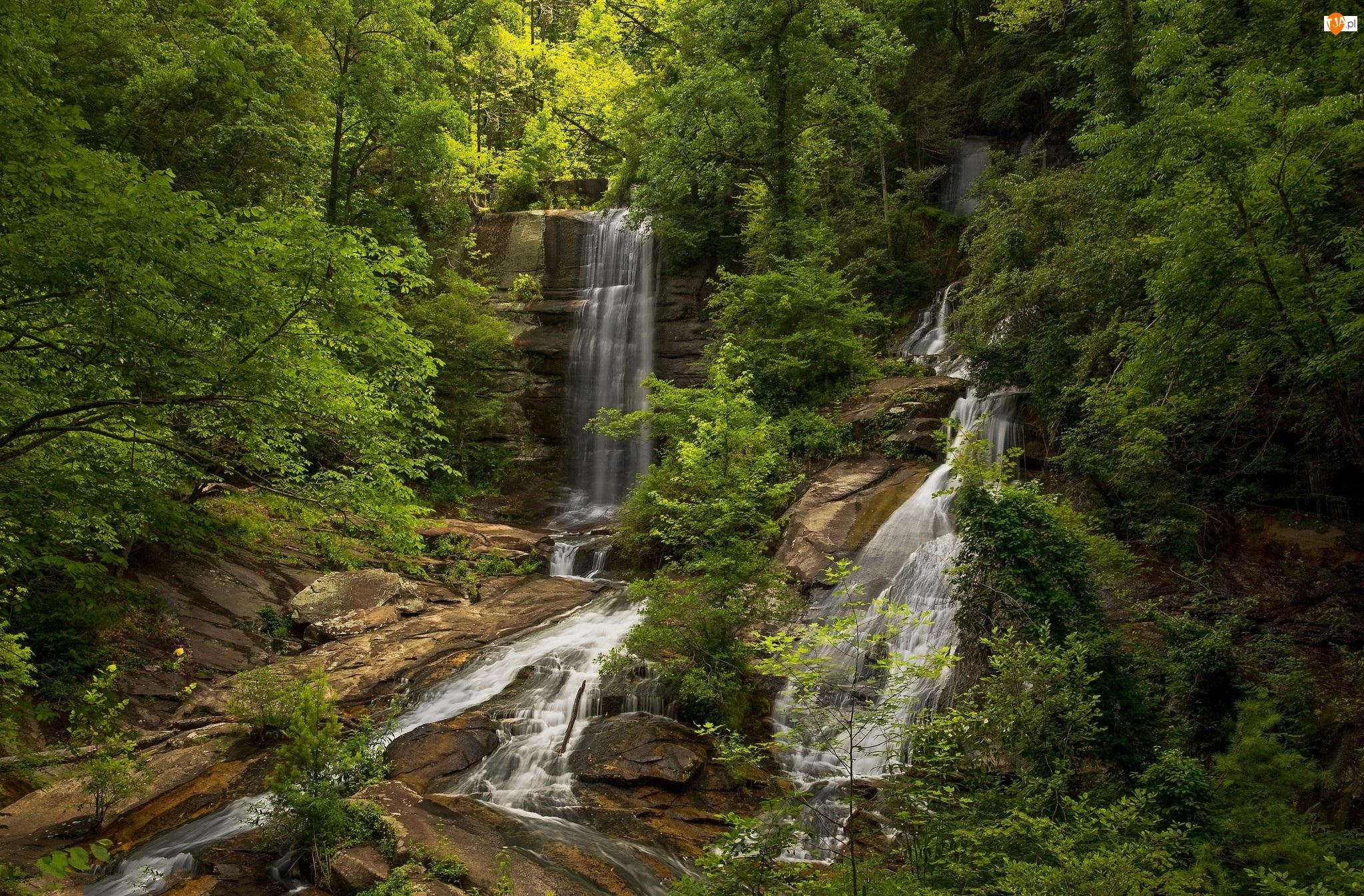Skały, Rzeka, Las, Drzewa, Wodospad