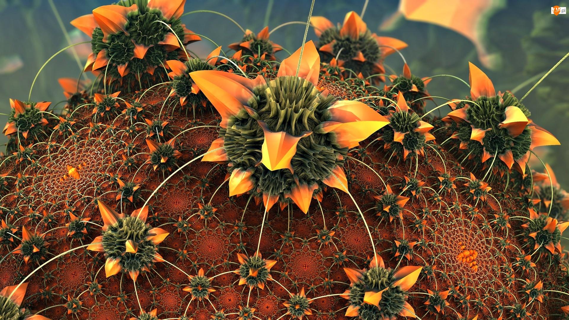 3D, Kwiat, Kaktus