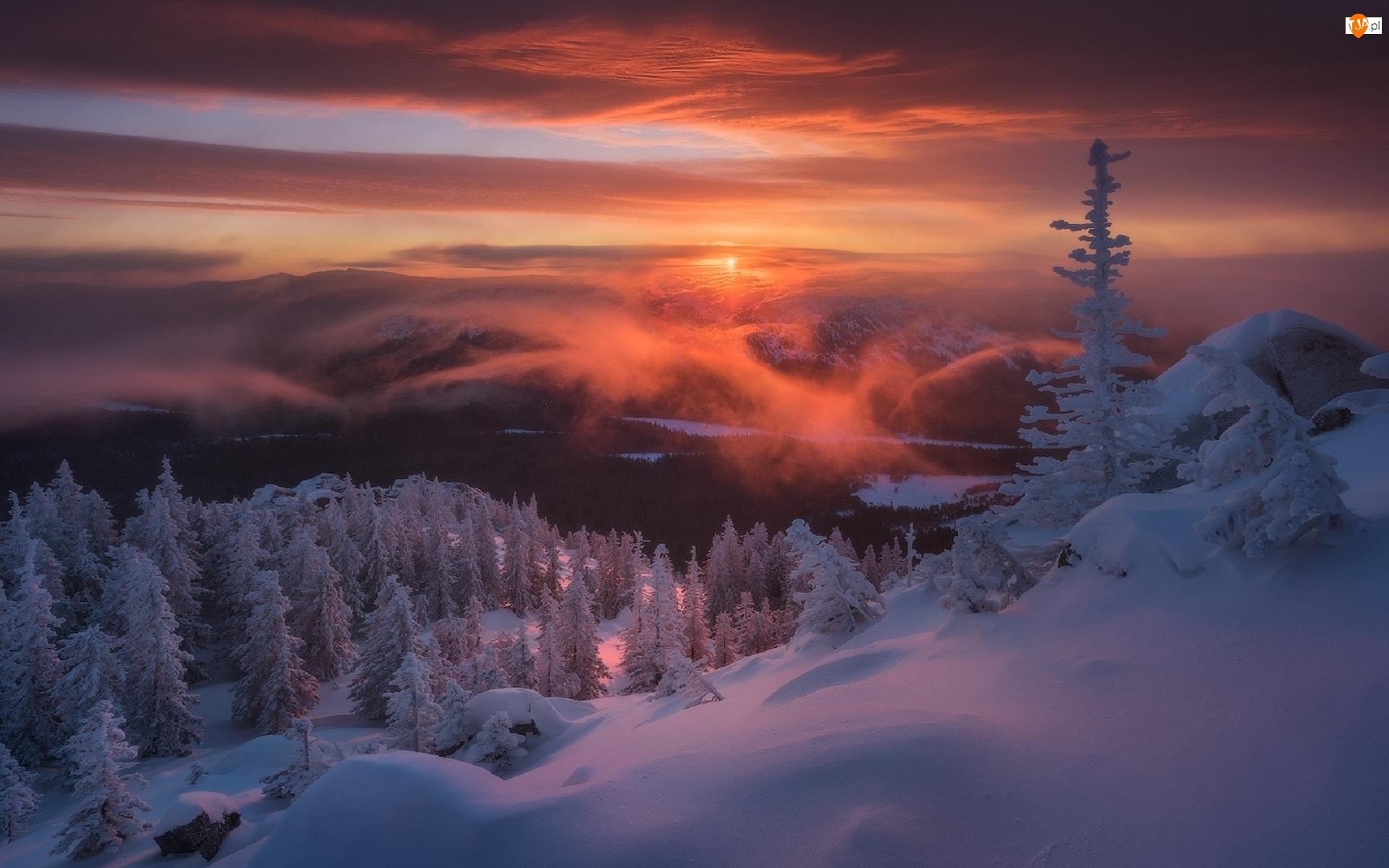 Góry Ural, Park Narodowy Taganaj, Drzewa, Rosja, Ośnieżone, Wschód słońca, Zima