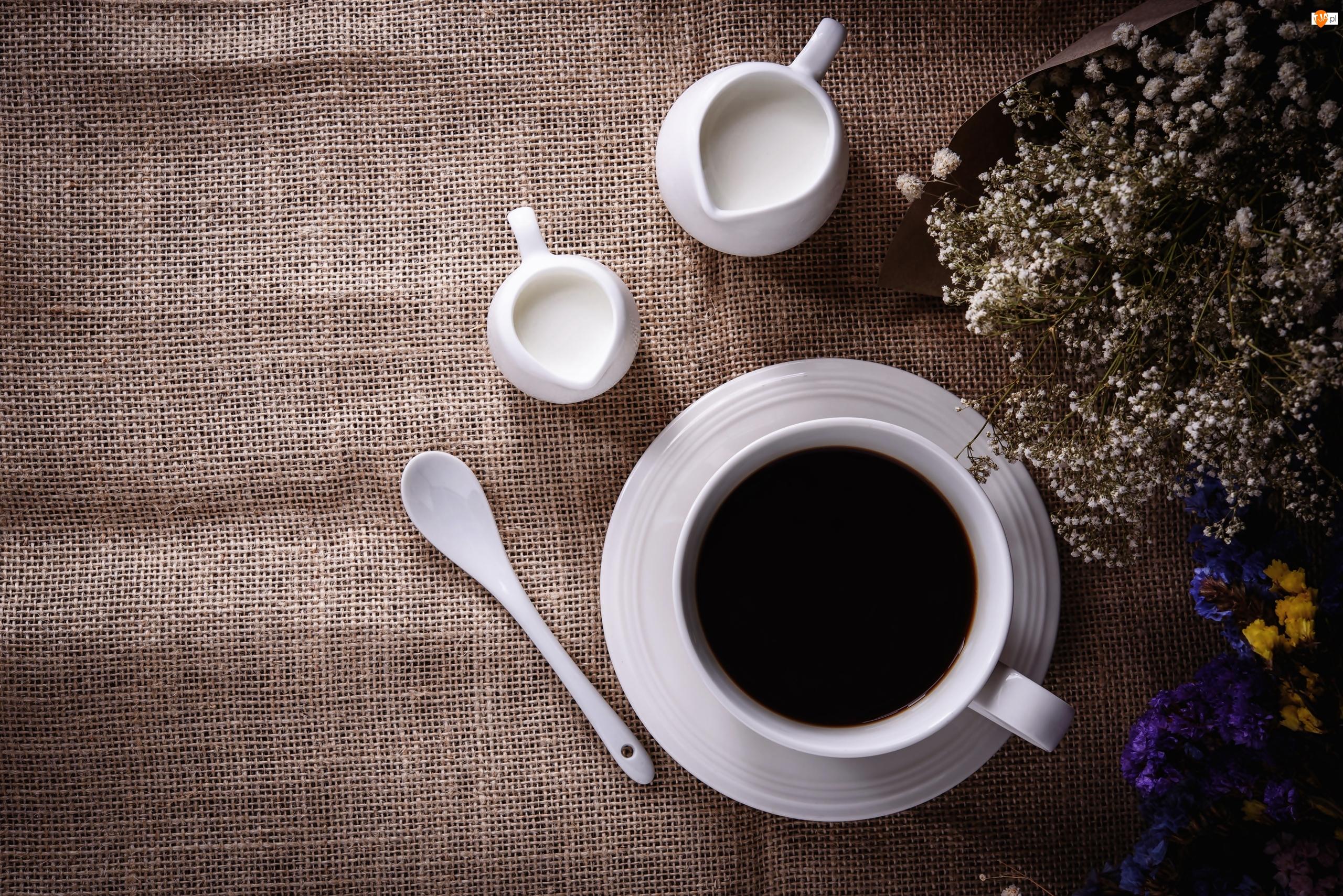 Dzbanuszki, Kwiaty, Filiżanka, Kawa, Mleko