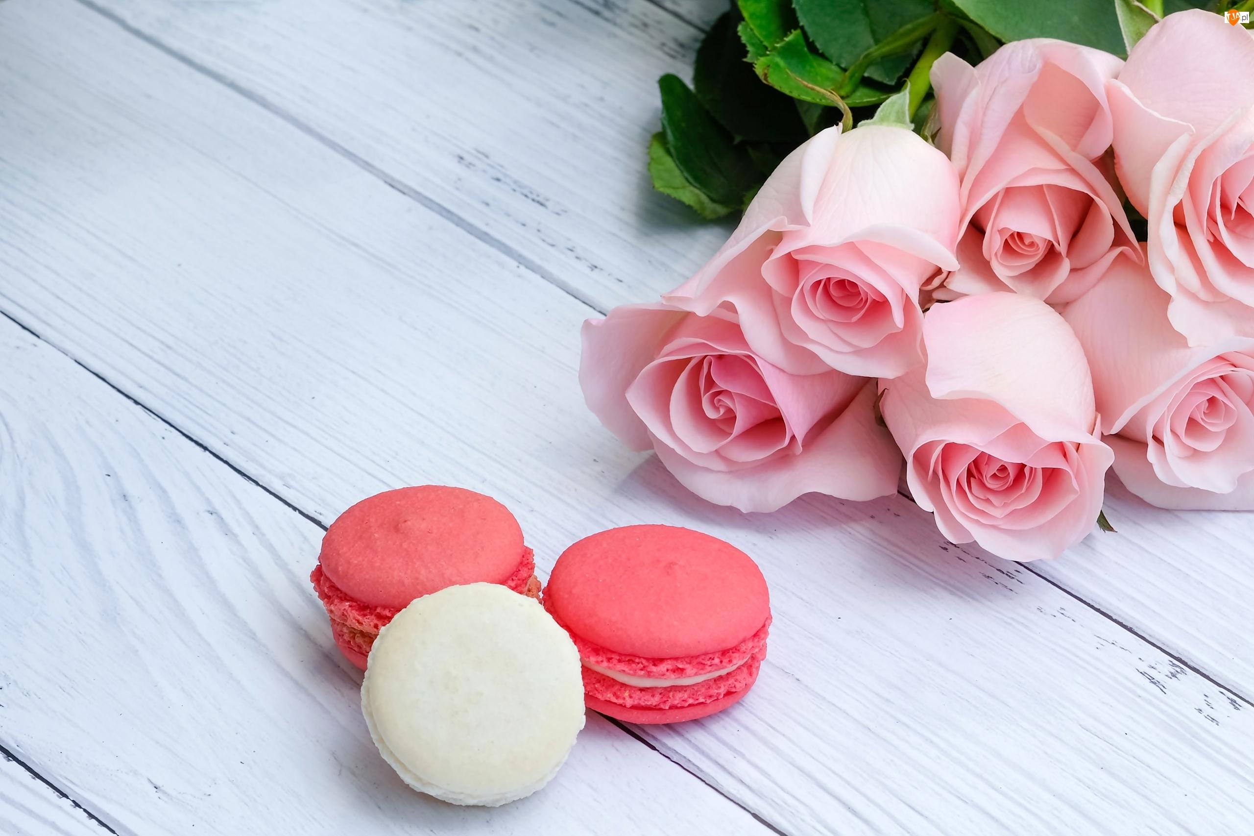 Makaroniki, Różowe, Róże, Ciasteczka