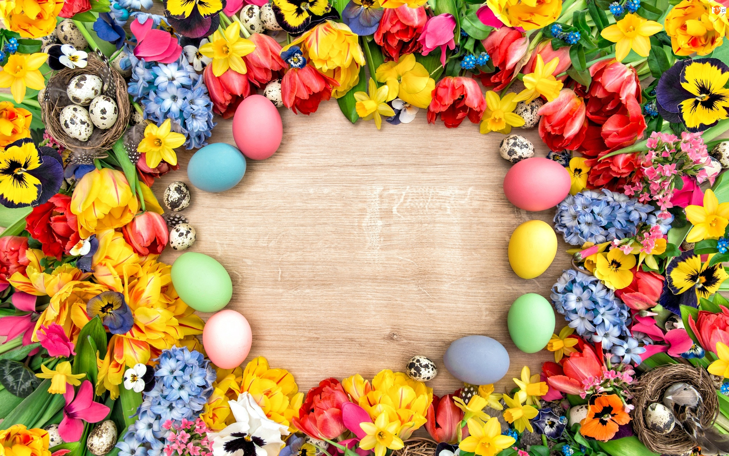 Pisanki, Wielkanoc, Wiosenne, Kwiaty