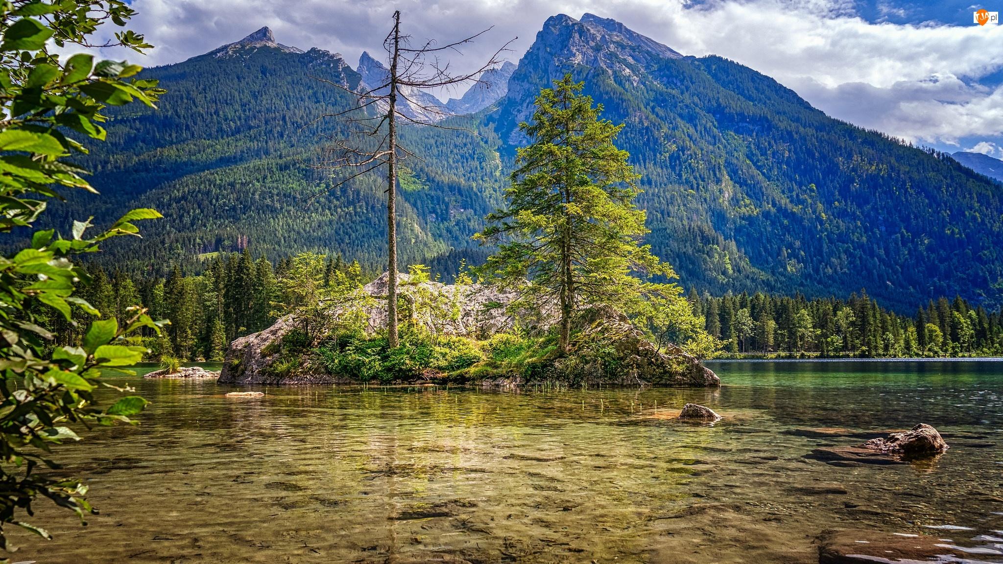 Alpy, Skały, Niemcy, Góry, Bawaria, Jezioro Hintersee, Drzewa