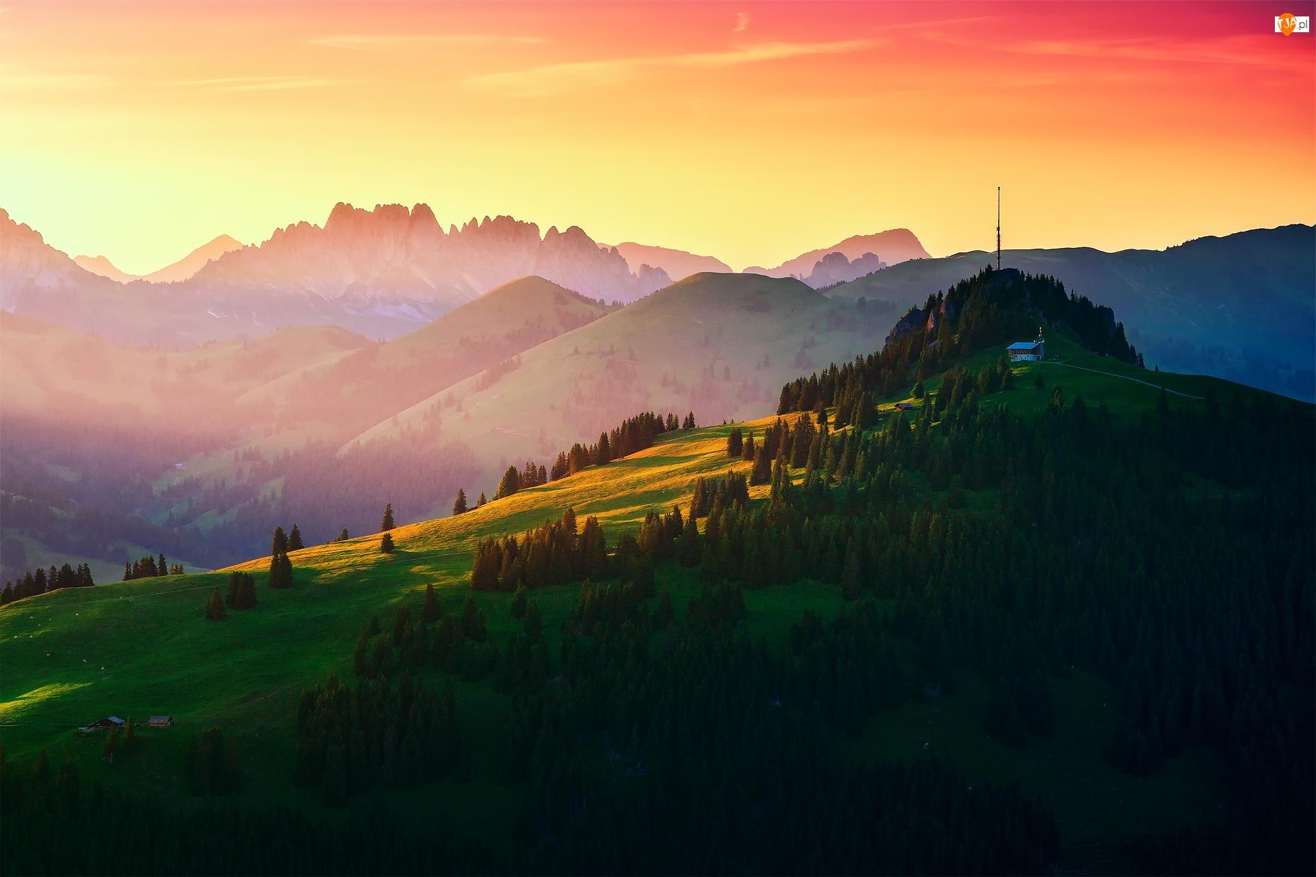 Lasy, Łąki, Szwajcaria, Góry, Gstaad, Wzgórze, Wieża radiowa