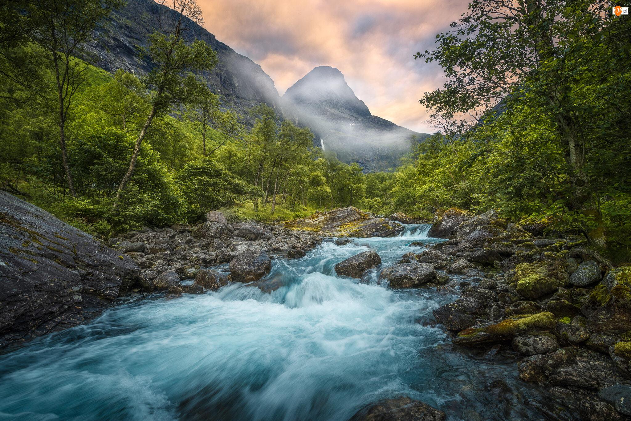 Dolina Romsdalen, Norwegia, Kamienie, Drzewa, Rzeka Rauma, Góry