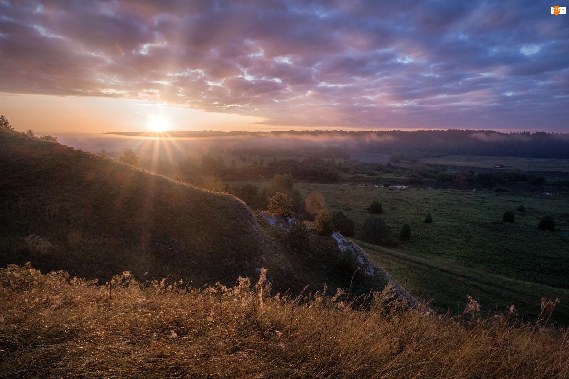 Promienie słońca, Wzgórza, Rosja, Niebo, Kraj Permski, Sylva, Drzewa