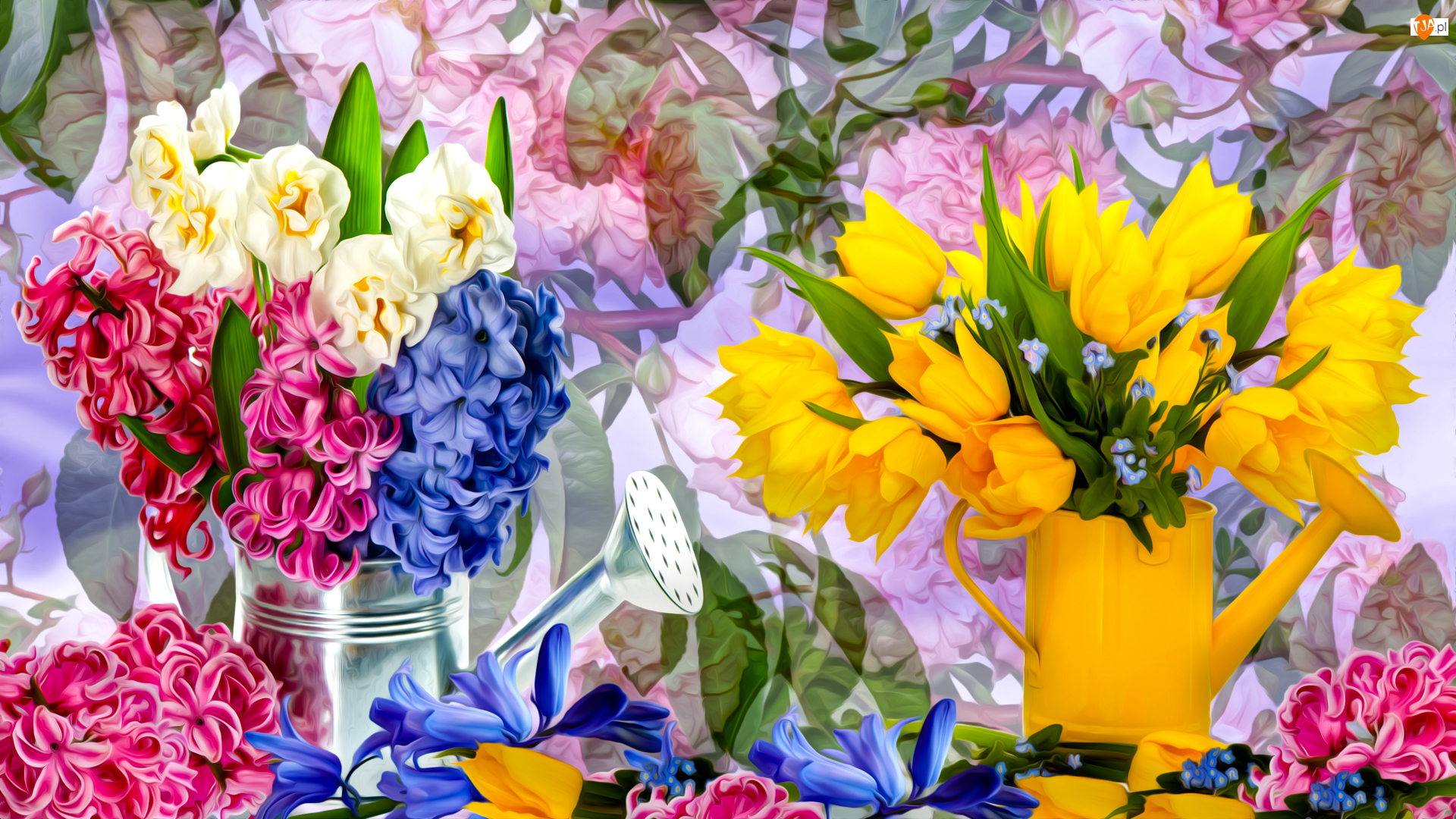 Tulipany, Grafika, Hiacynty, Kwiaty, Konewki