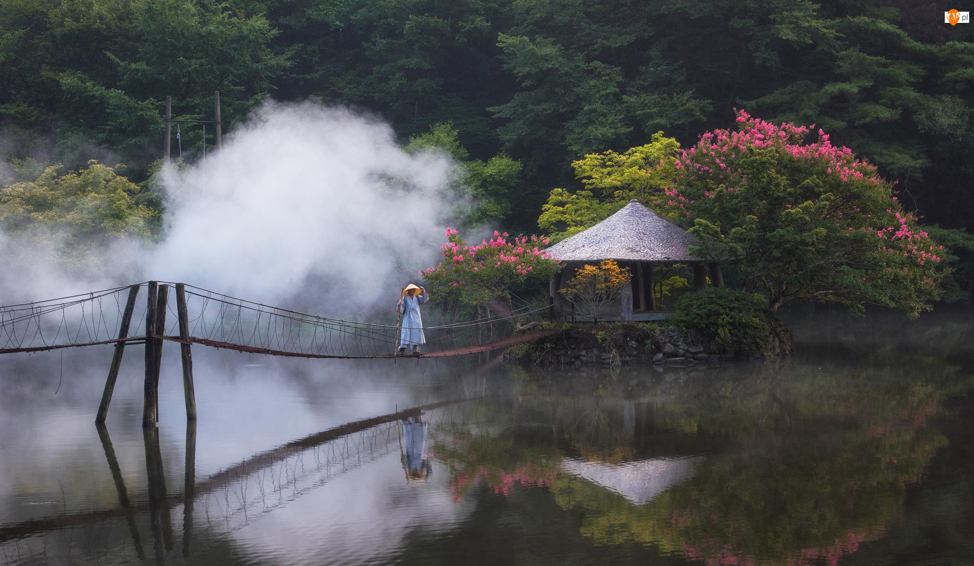 Most wiszący, Rzeka, Człowiek, Mgła, Kwiaty, Drzewa, Dom