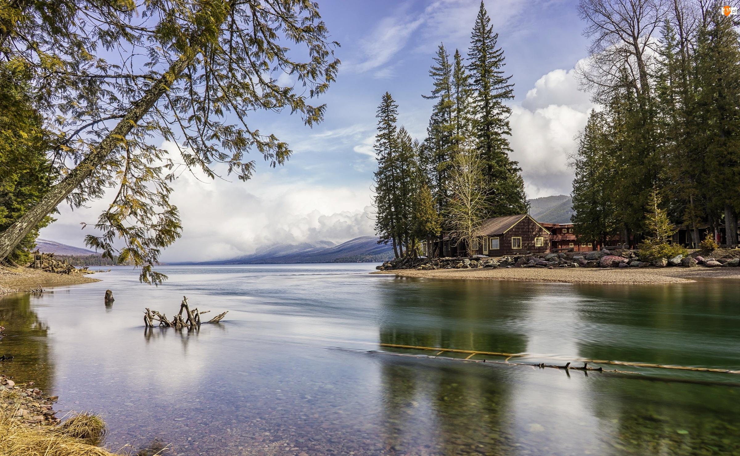 Rzeka, Park Narodowy Glacier, Dom, Stany Zjednoczone, Drzewa, Stan Montana
