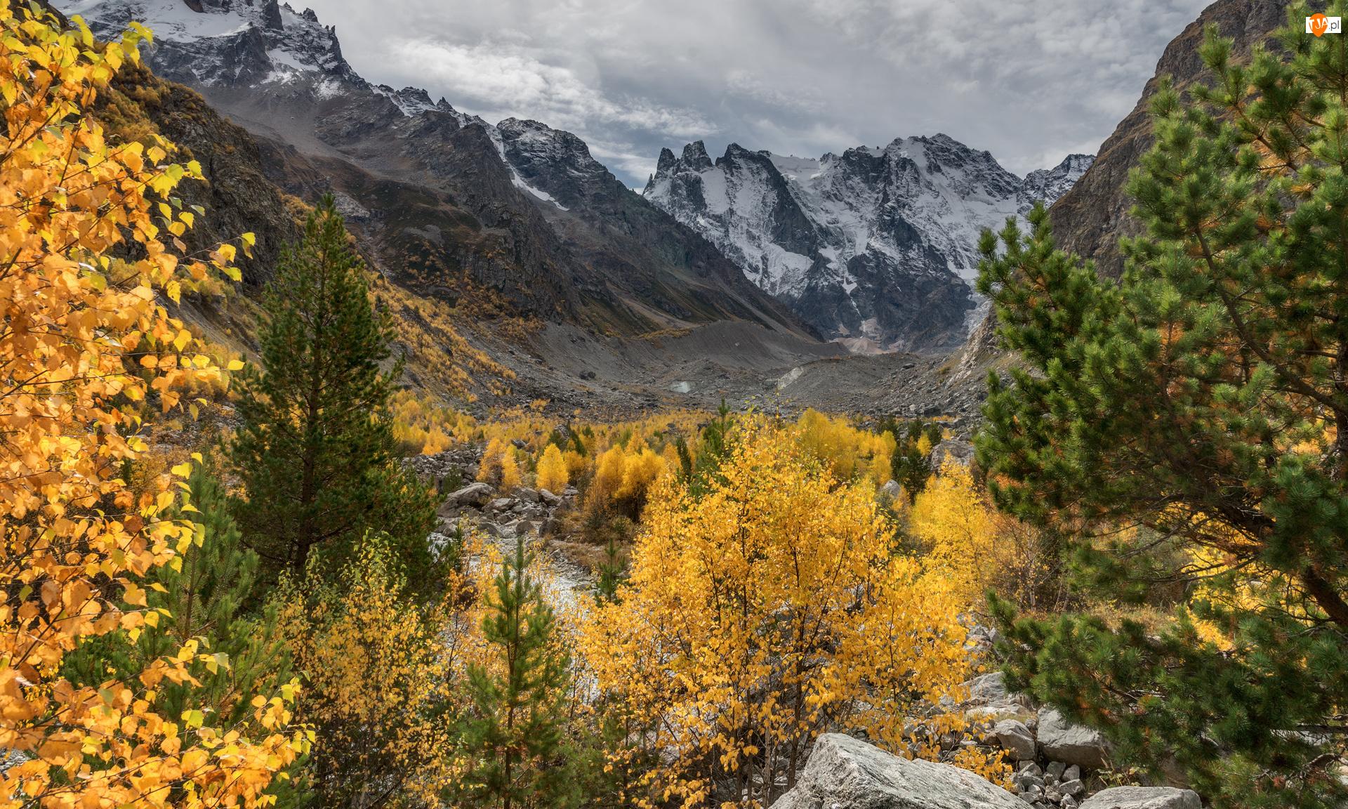 Kamienie, Jesień, Góry, Drzewa