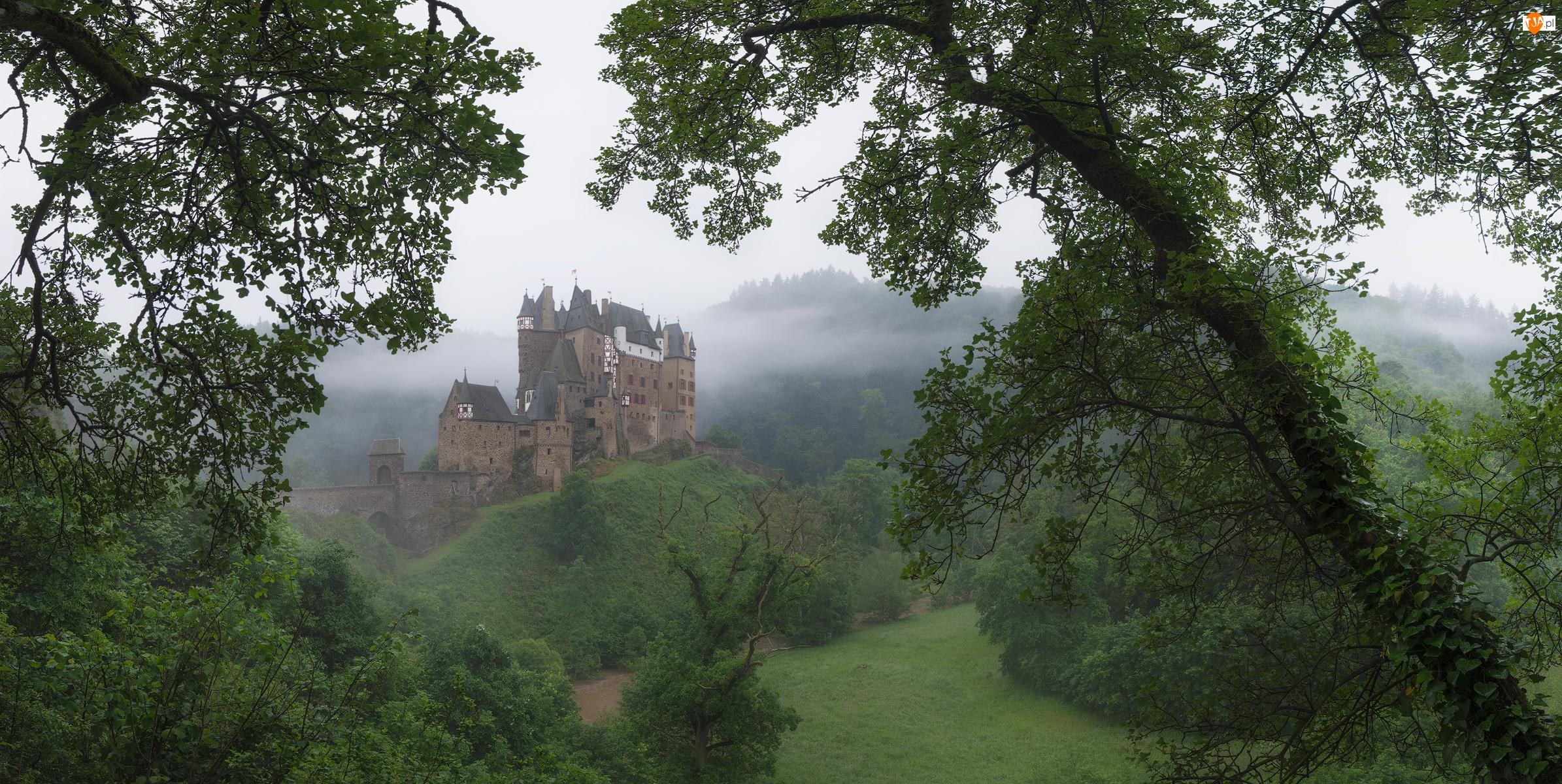 Niemcy, Drzewa, Nadrenia-Palatynat, Mgła, Gmina Wierschem, Rzeka, Wzgórza, Zamek Eltz, Góry