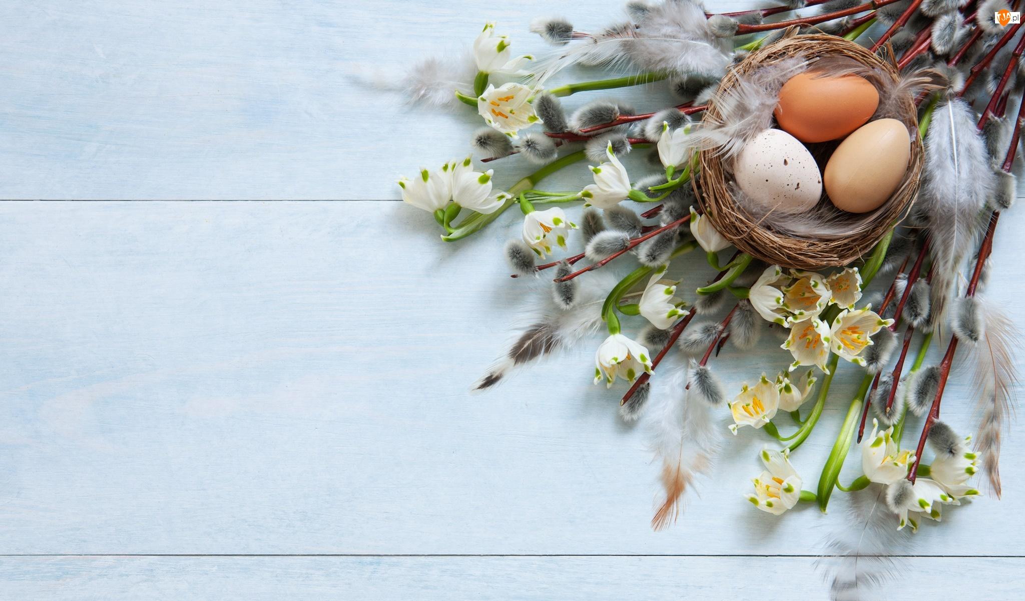 Bazie, Kwiaty, Wielkanoc, Gałązki, Jajka, Gniazdo, Śnieżyce