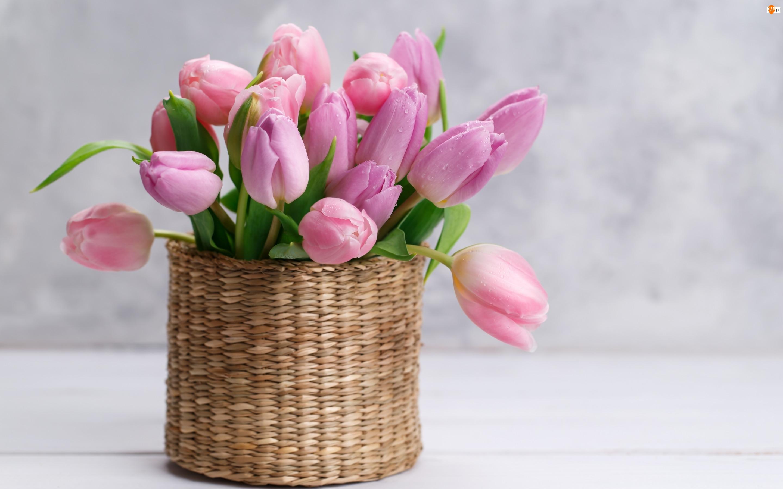 Krople, Koszyk, Tulipany, Bukiet kwiatów, Okrągły