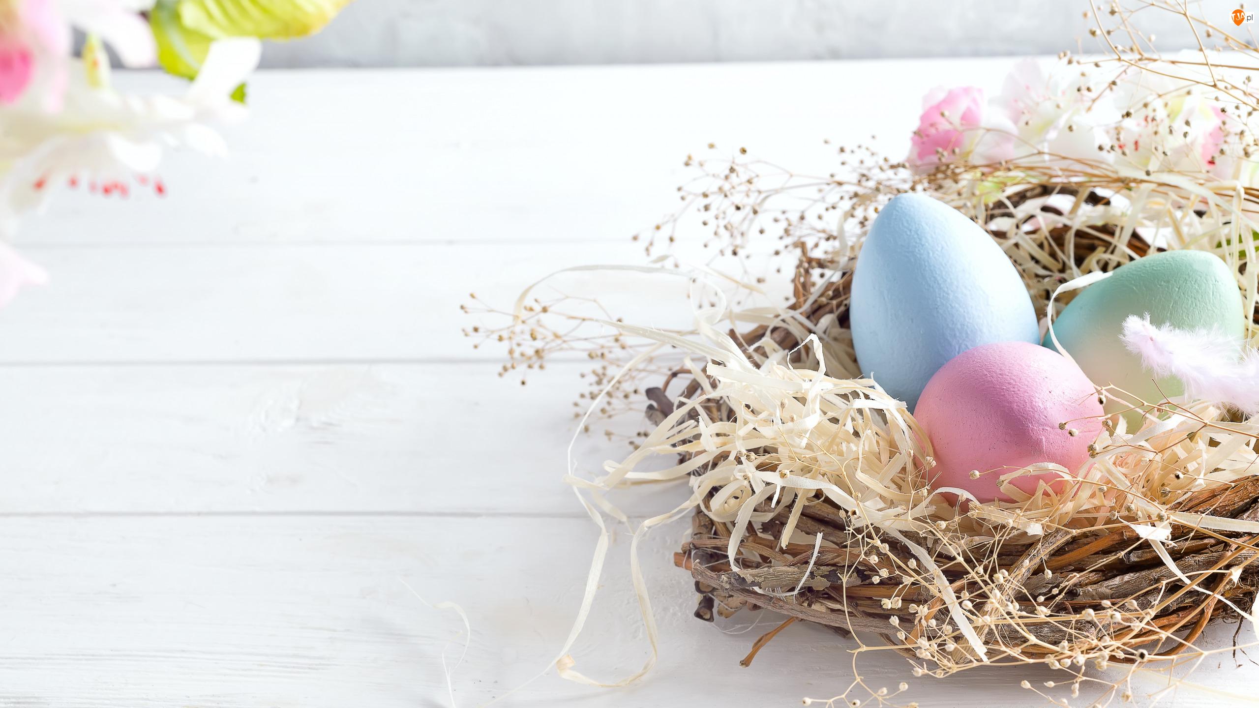 Kwiaty, Wielkanoc, Pisanki, Gniazdo