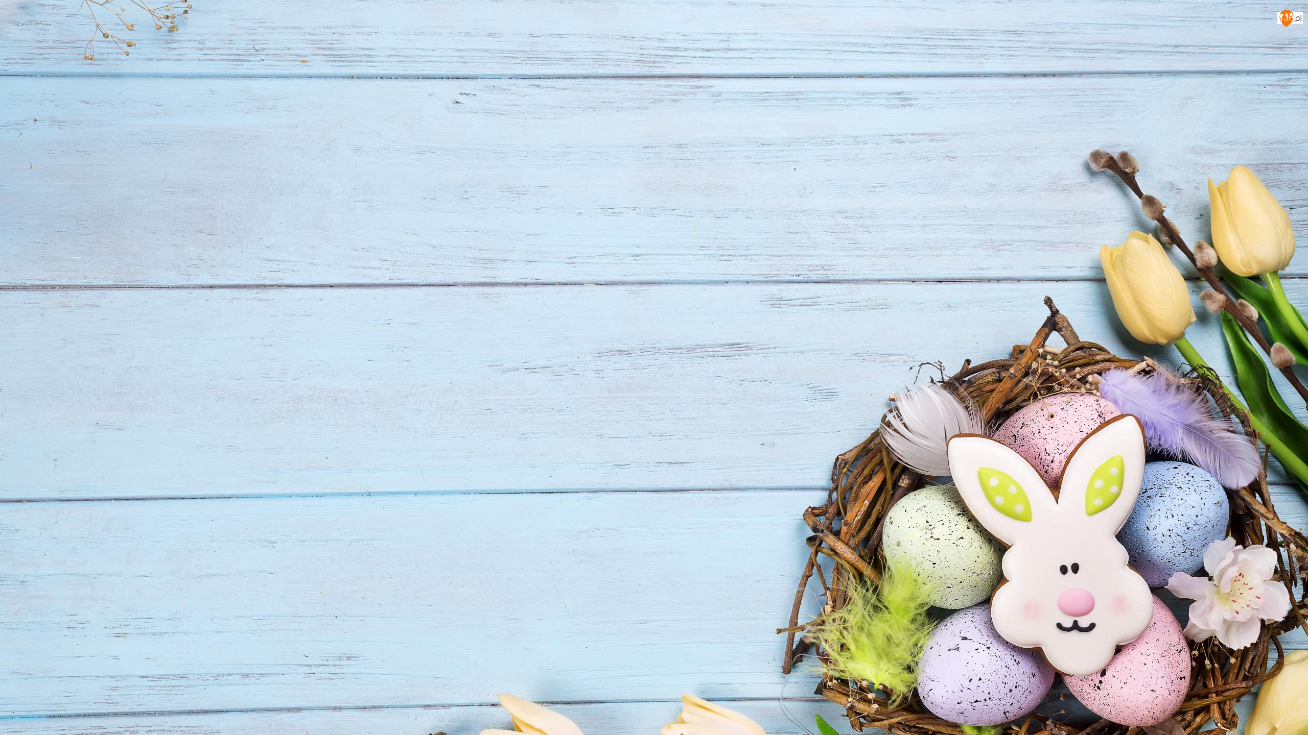 Ciasteczko, Zajączek, Wielkanoc, Pisanki, Bazie, Tulipany, Gniazdo