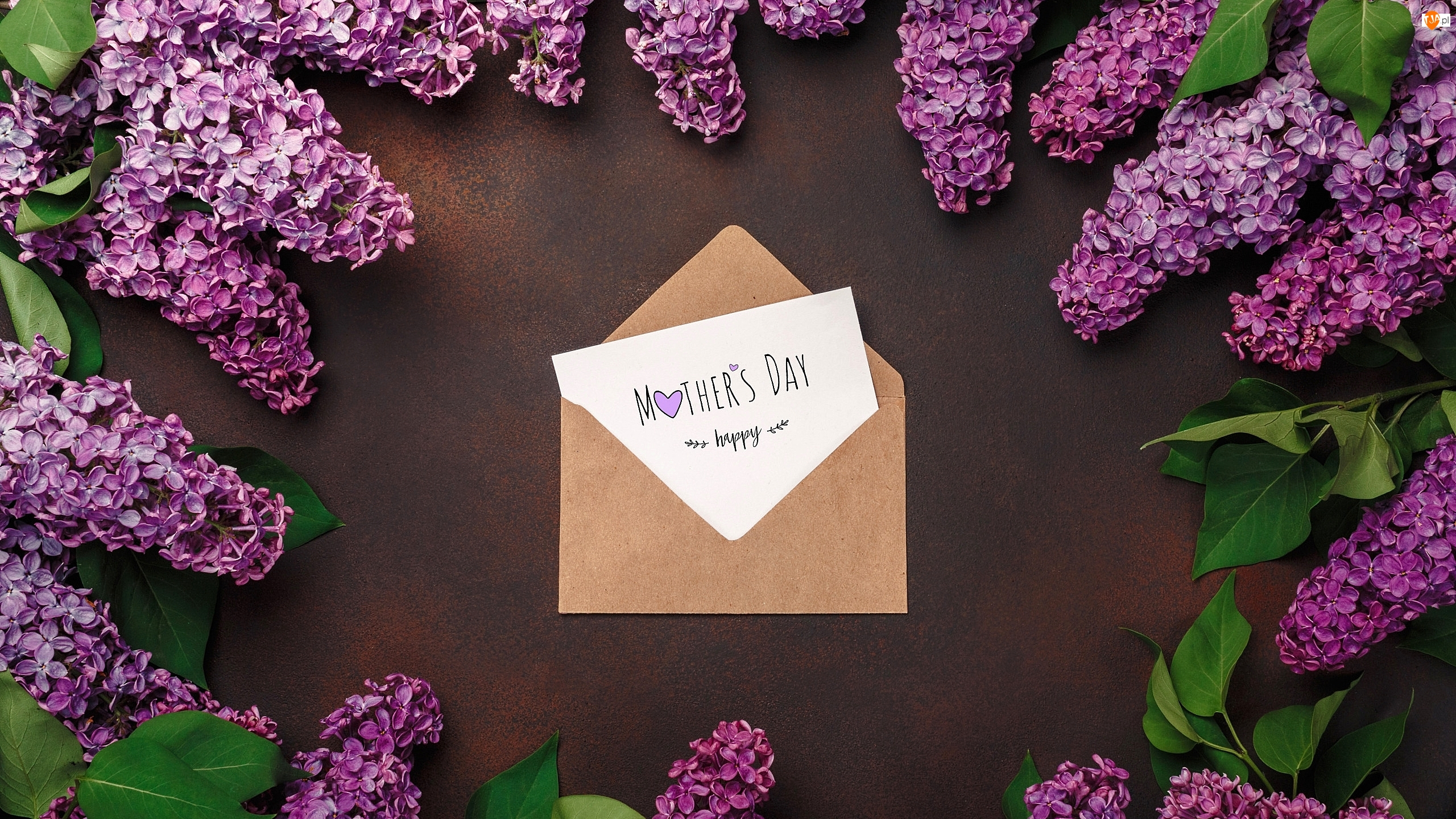 Bez, Liście, Dzień Matki, Kwiat, Życzenia, Kartka, Koperta