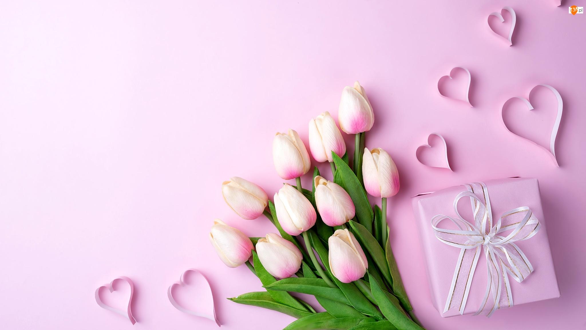 Tulipany, Różowe tło, Kwiaty, Serduszka, Prezent