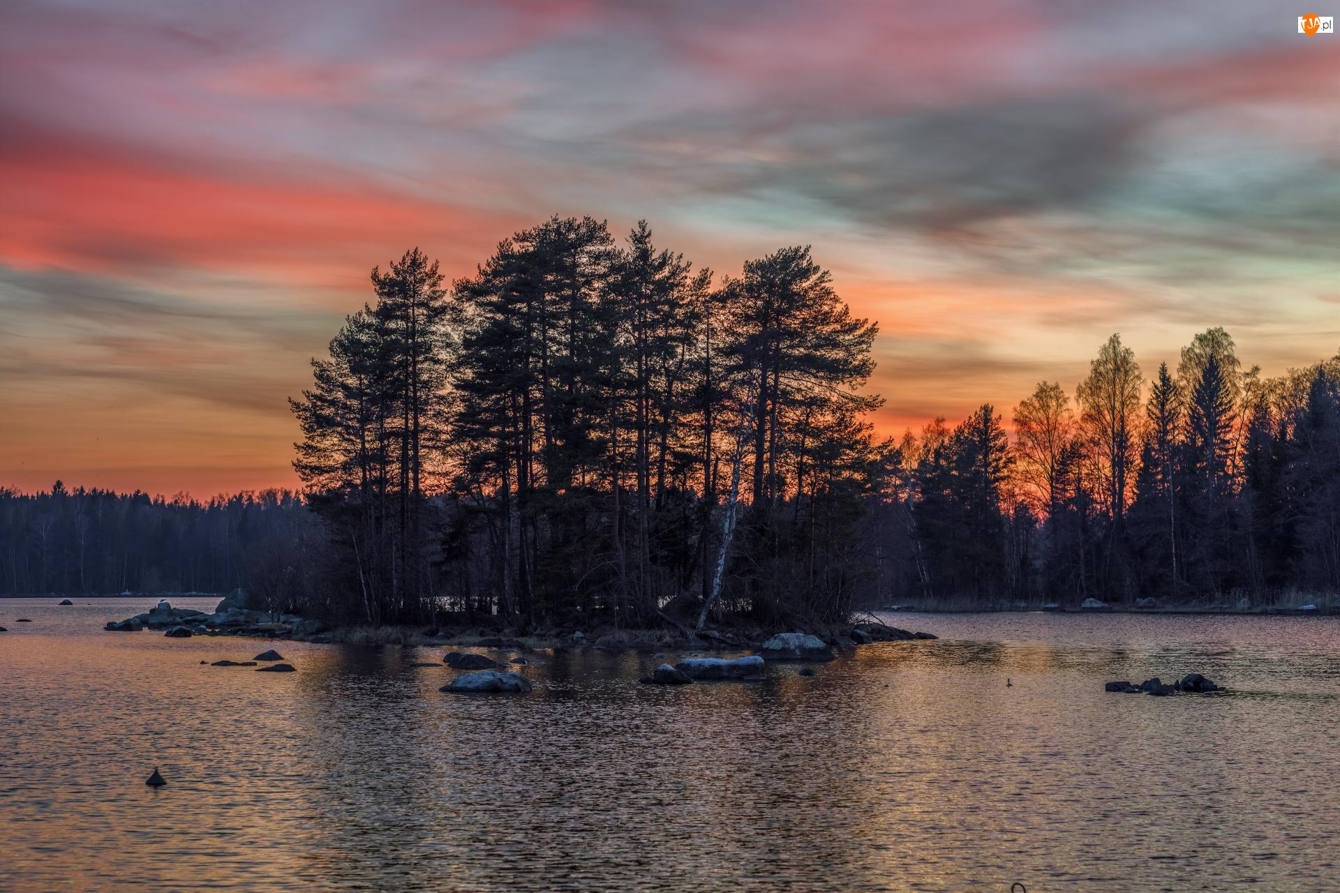 Drzewa, Zachód słońca, Rzeka, Brzeg