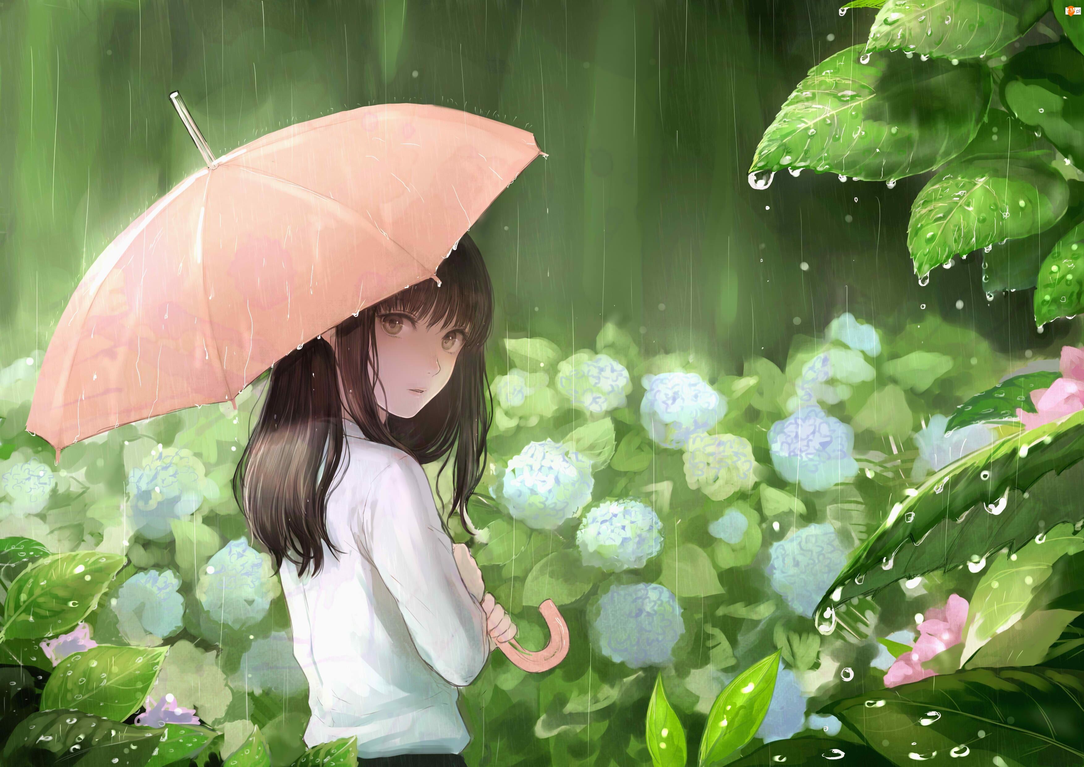 Rea Sanka, Sankarea, Deszcz, Manga Anime, Dziewczyna, Parasolka