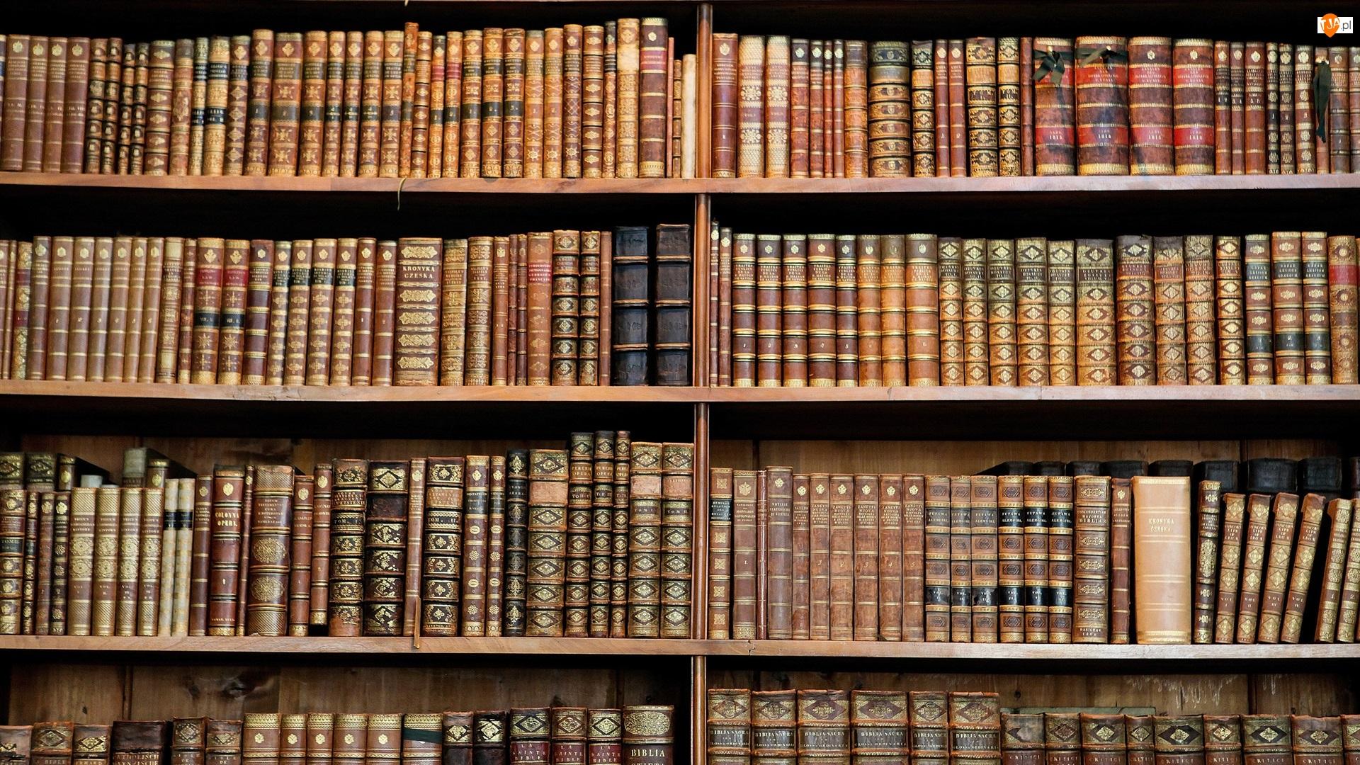 Półki, Biblioteka, Książki