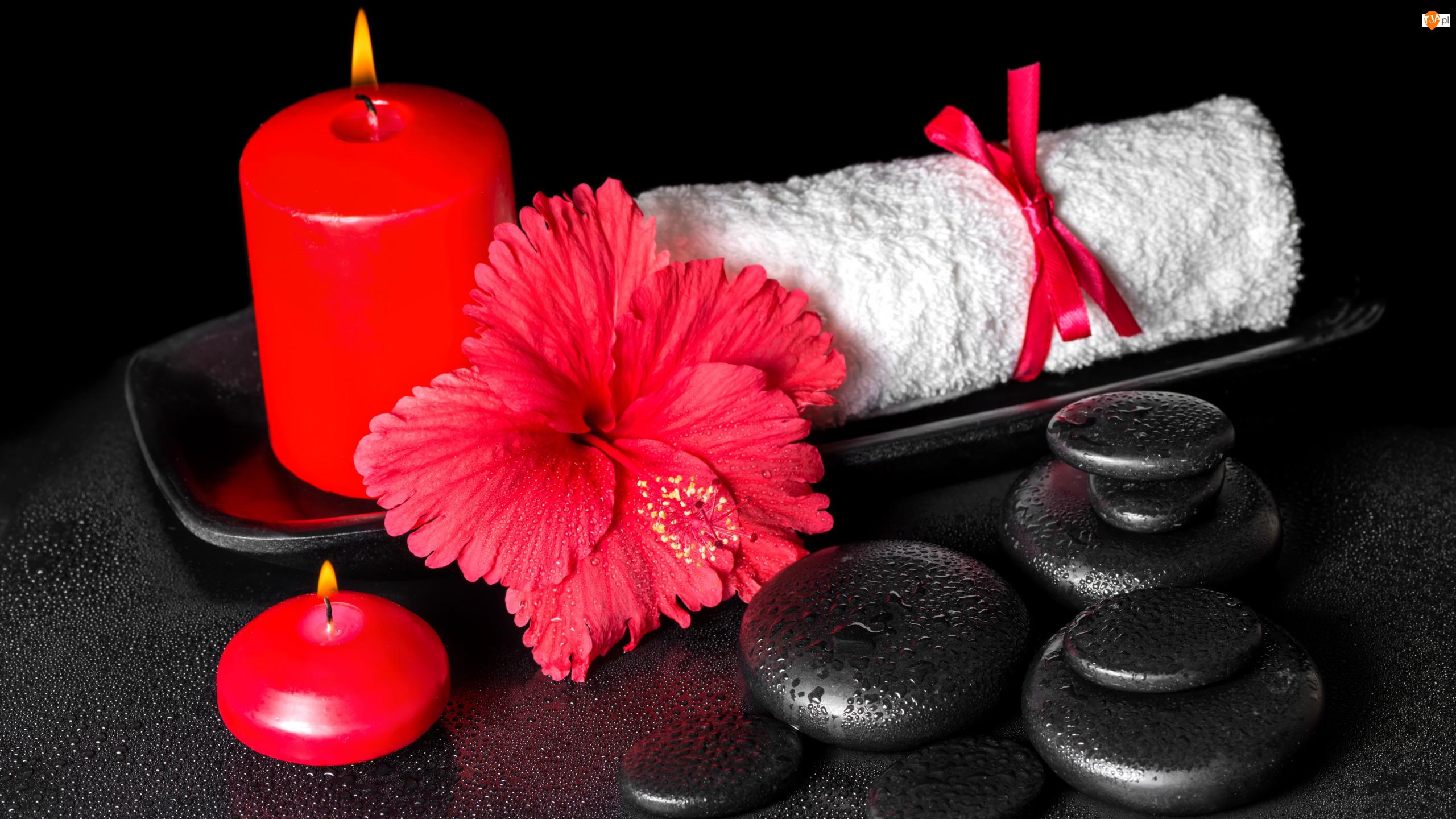 Kwiat, SPA, Kamienie, Hibiskus, Czerwone, Ręcznik, Tacka, Świece