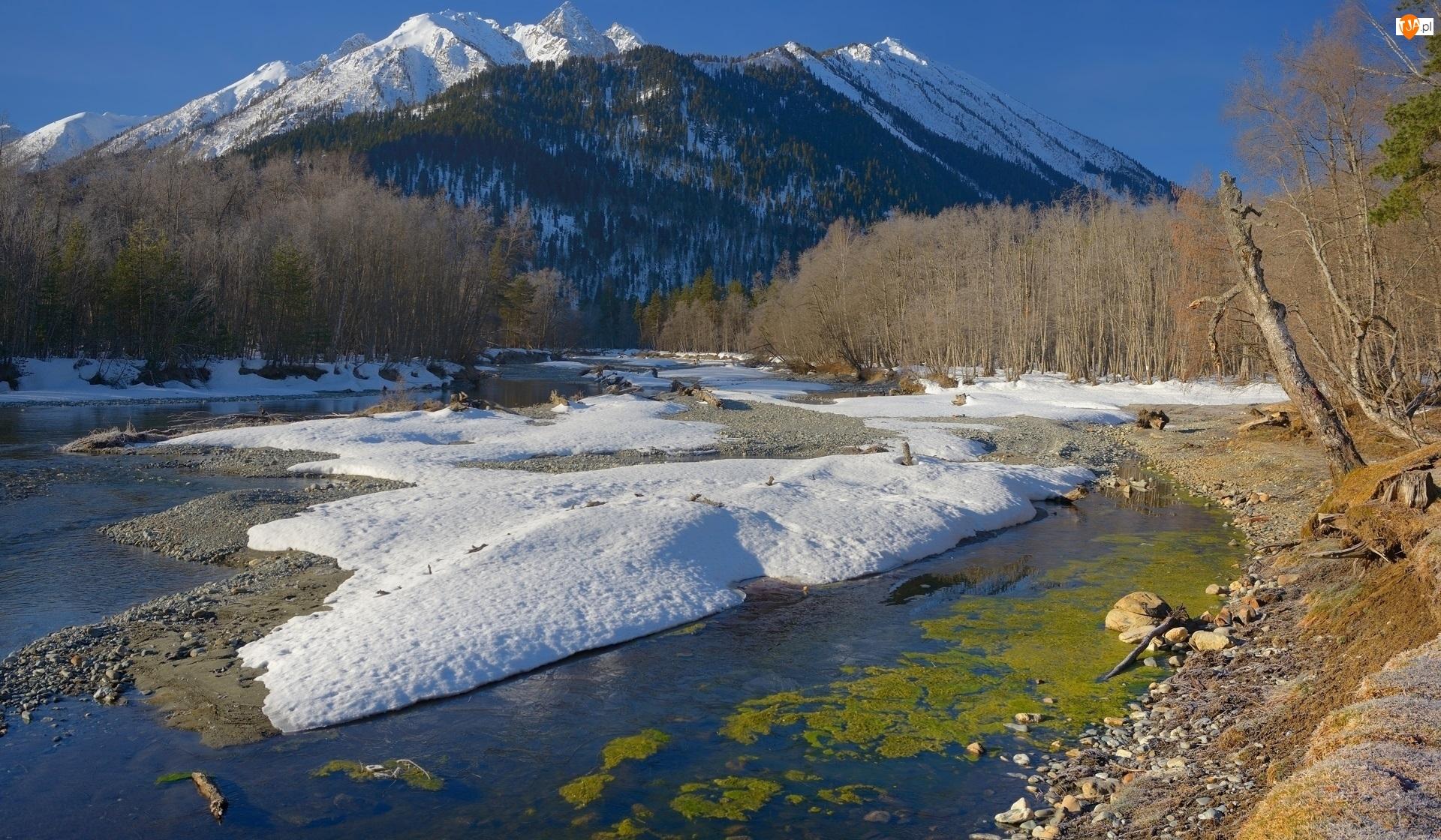 Śnieg, Góry, Kamienie, Republika Karaczajo-Czerkiesja, Kaukaz, Drzewa, Rosja, Rzeka Psysh