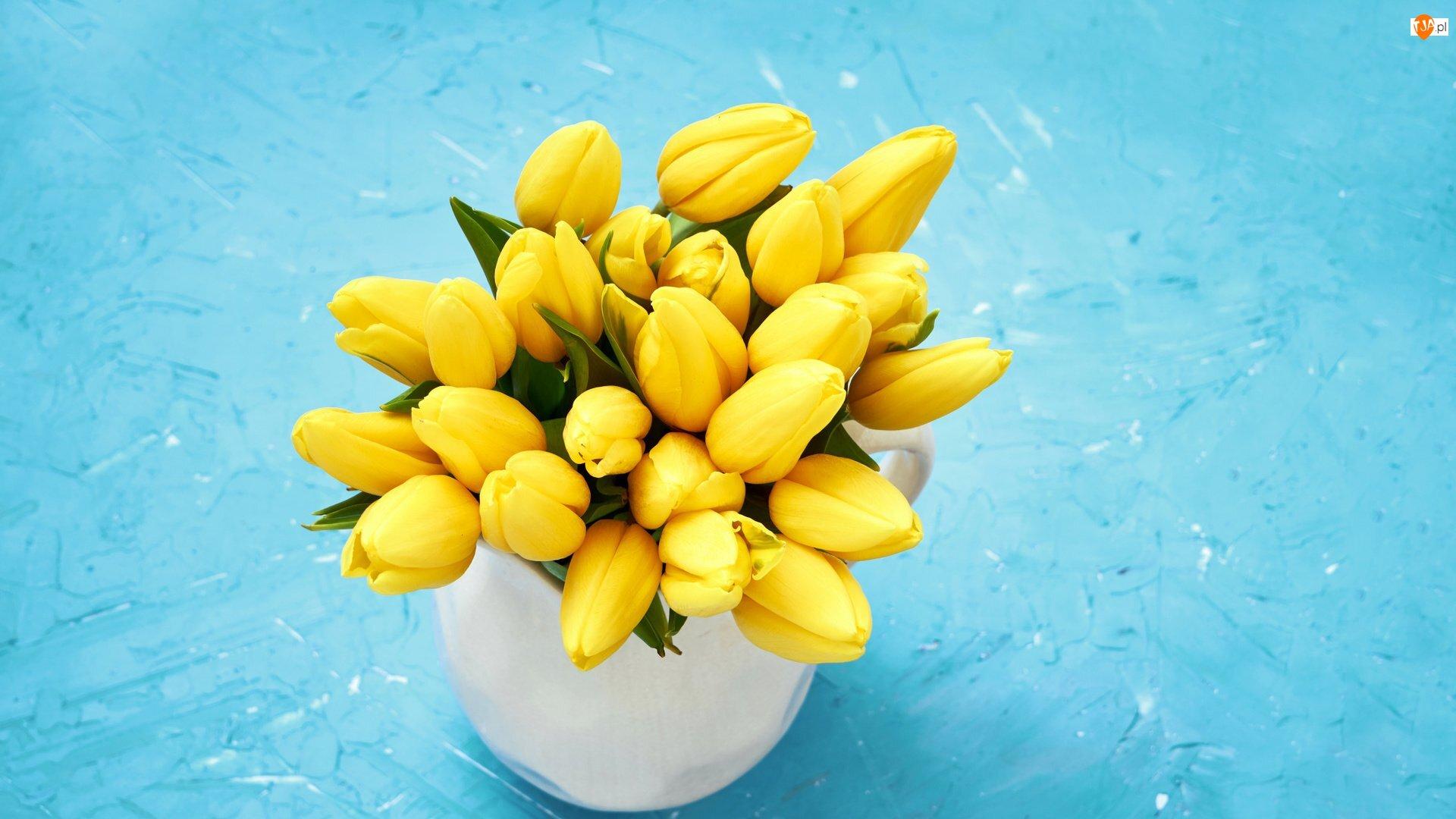 Kwiaty, Kubek, Żółte, Bukiet, Tulipany