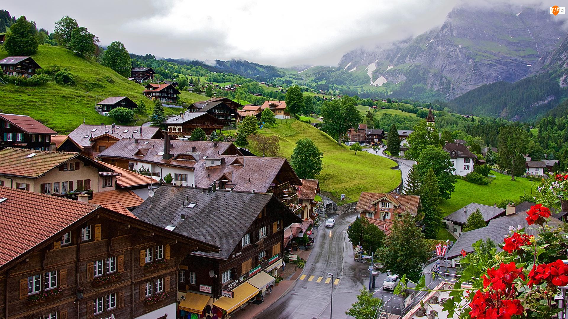Droga, Góry, Szwajcaria, Domy, Kanton Berno, Grindelwald, Miejscowość