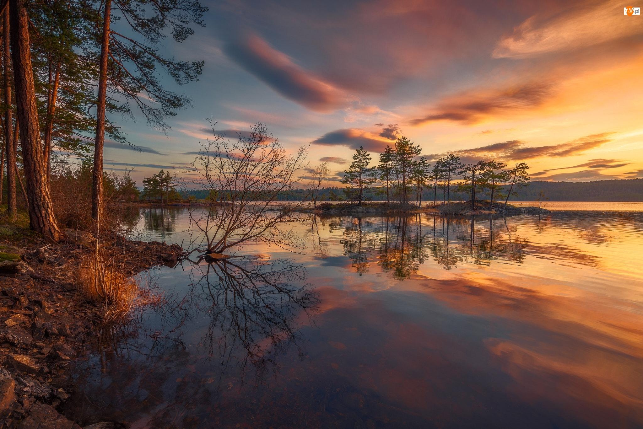 Wysepka, Drzewa, Norwegia, Jezioro, Gmina Ringerike, Chmury, Wschód słońca