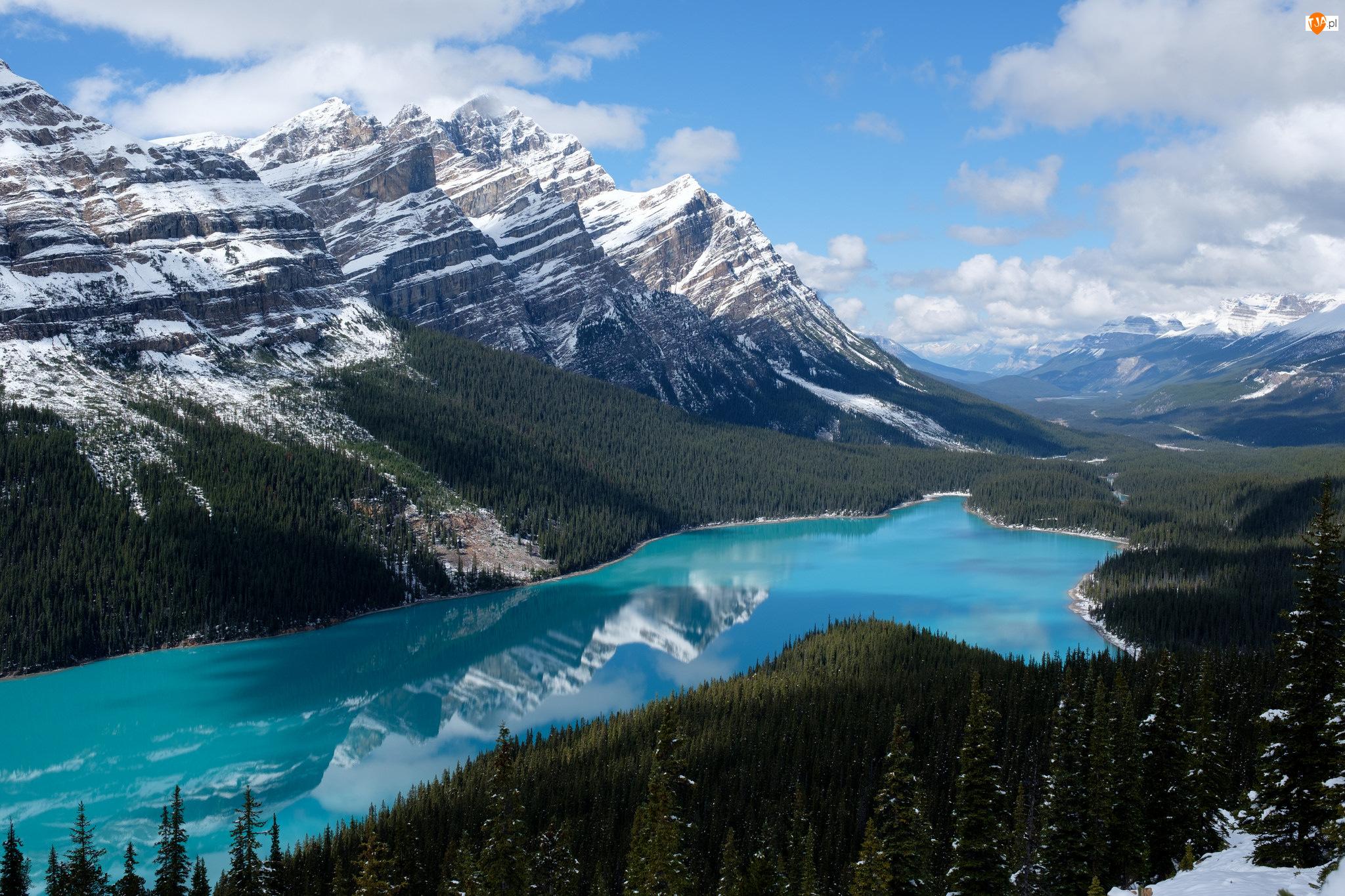 Chmury, Park Narodowy Banff, Las, Prowincja Alberta, Jezioro Peyto Lake, Drzewa, Kanada, Góry