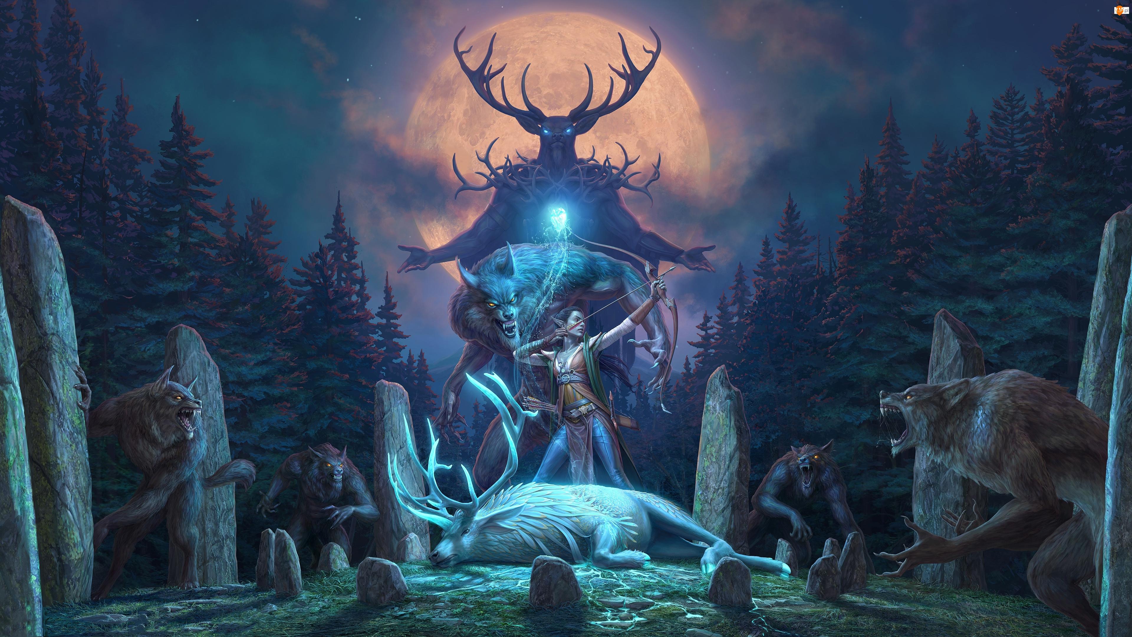The Elder Scrolls Online Wolfhunter, Gra, Elf, Las, Fantasy, Wilkołaki