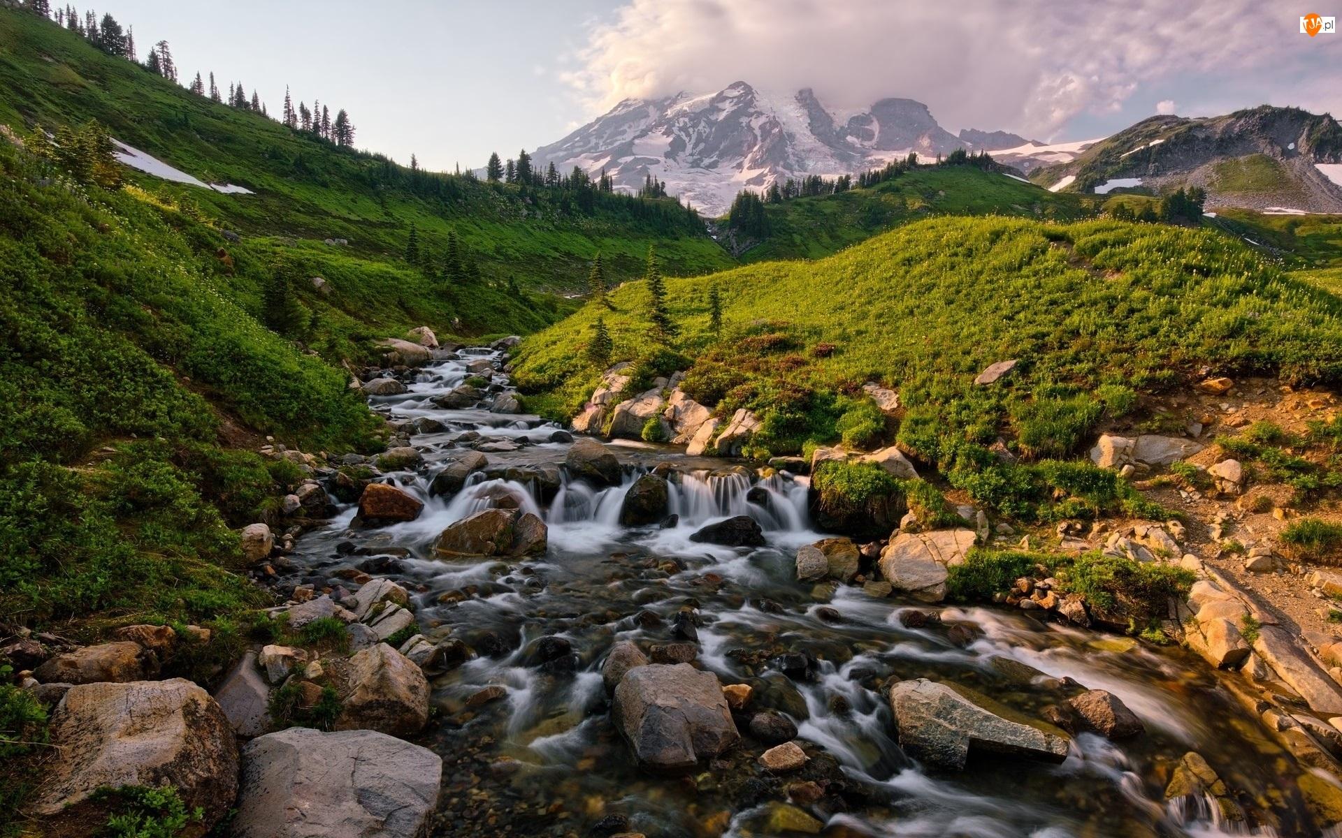 Rzeka, Kamienie, Stany Zjednoczone, Park Narodowy Mount Rainier, Stan Waszyngton, Szczyt Mount Rainier, Góry