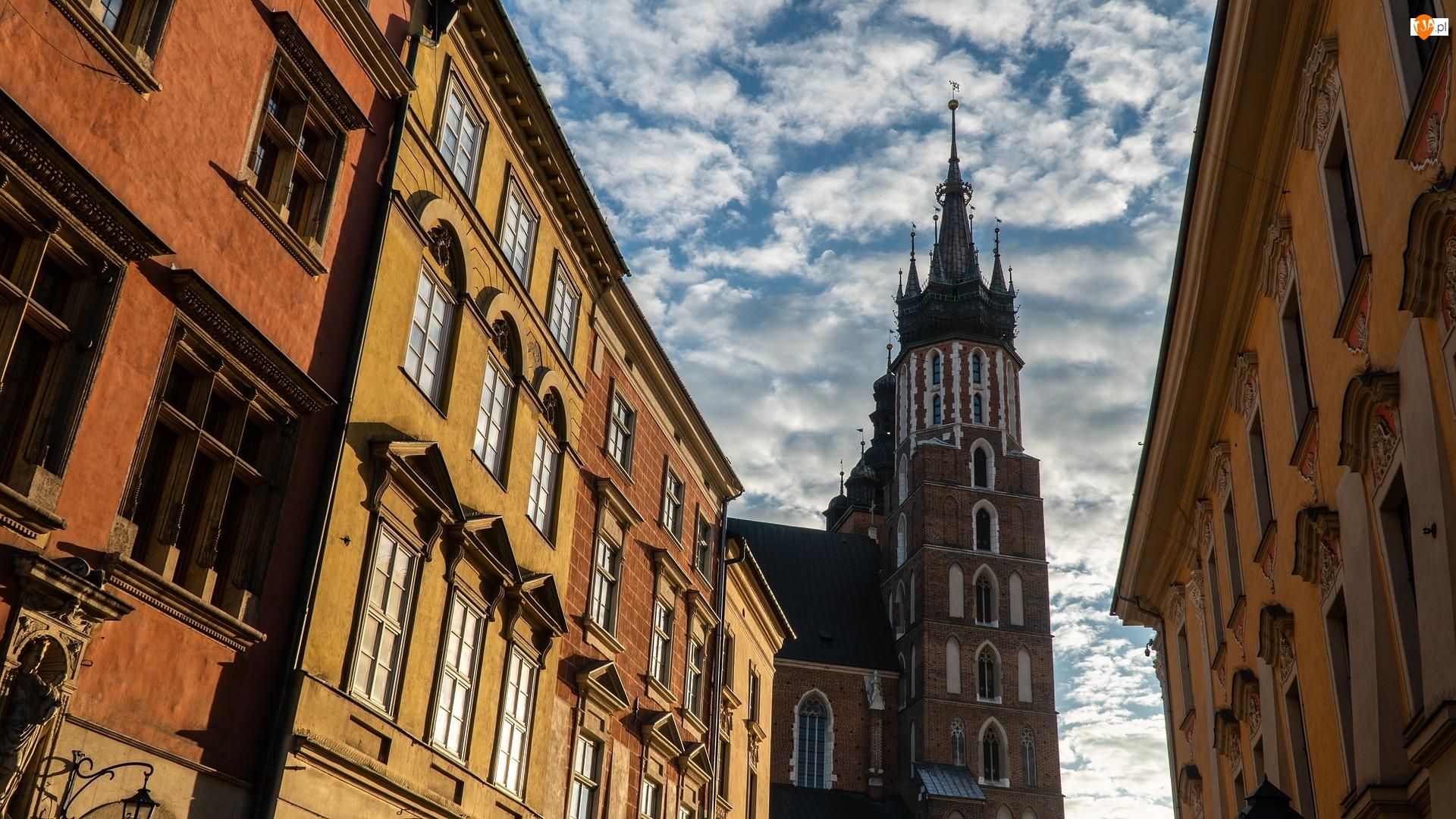 Polska, Hejnalica, Kraków, Domy, Kamienice, Kościół Mariacki, Bazylika Mariacka, Wieża, Kościół Wniebowzięcia Najświętszej Marii Panny