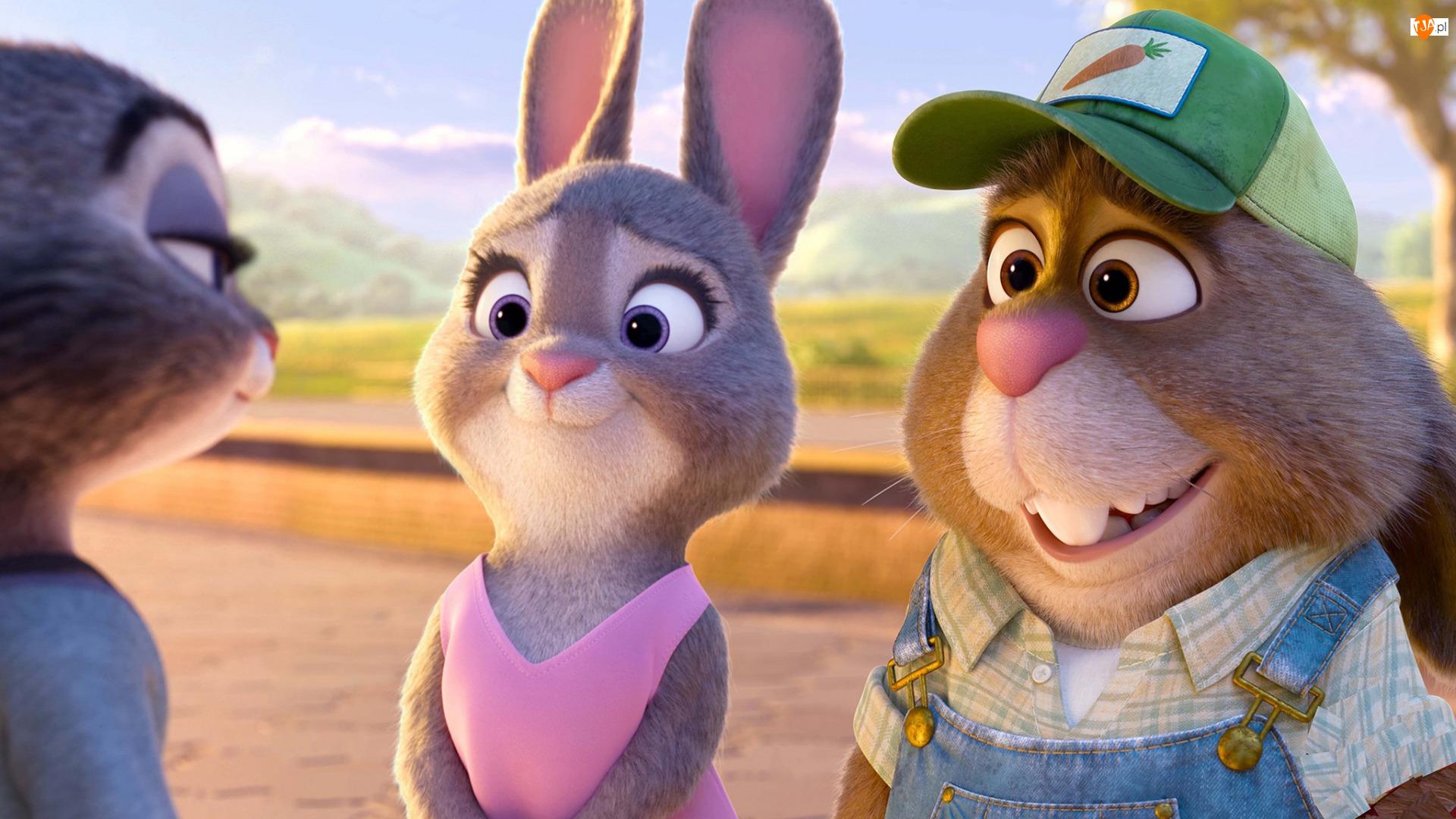 Stu Hopps, Film animowany, Zwierzogród, Bonnie Hopps