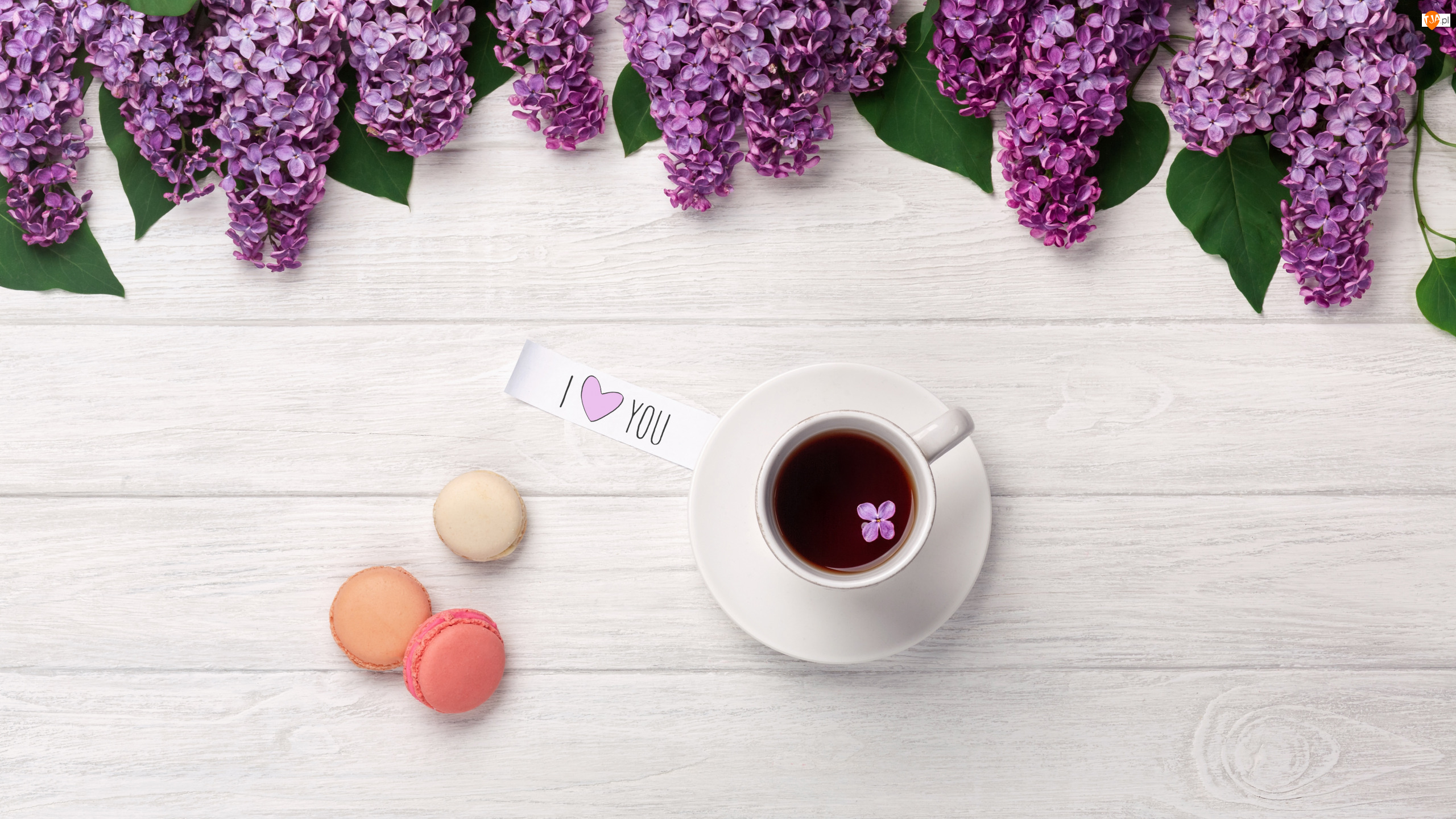 Kawa, Ciasteczka, I Love You, Bez, Napis, Kartka, Makaroniki