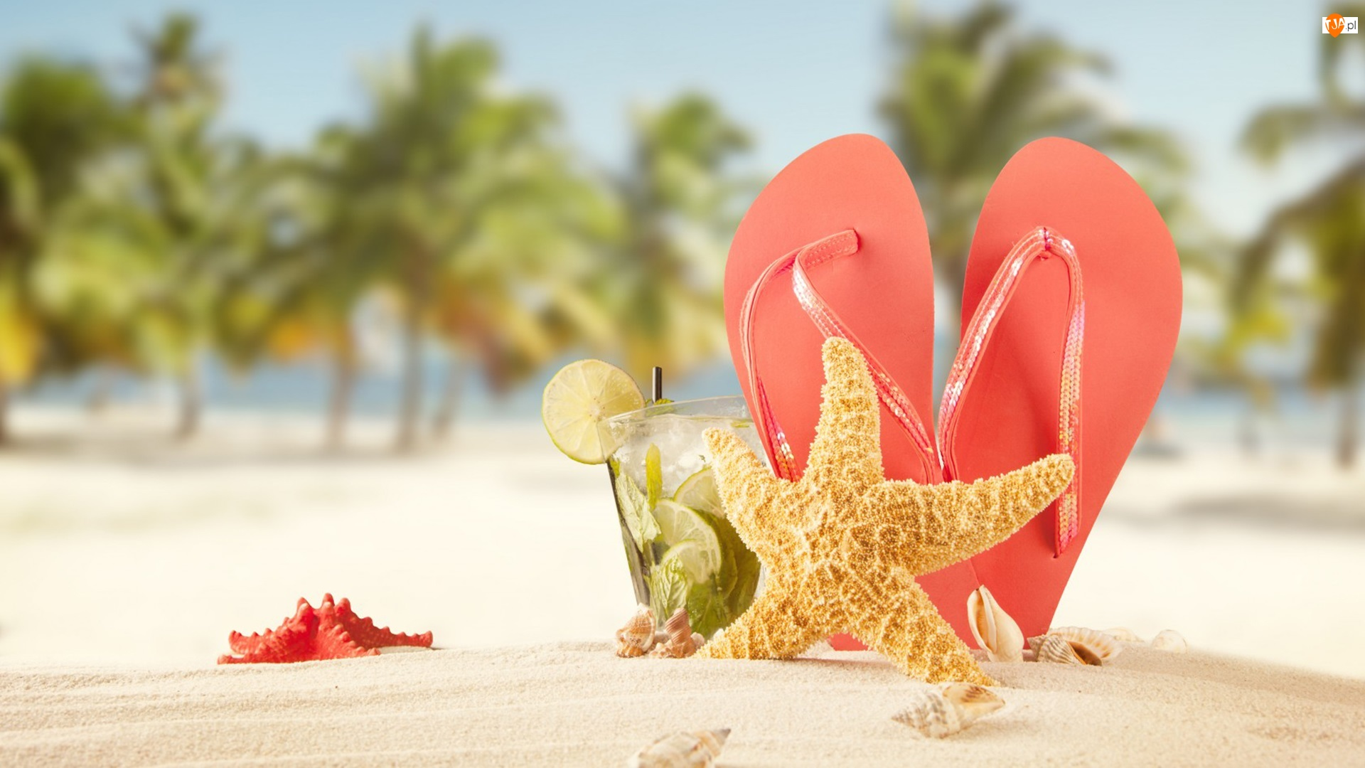 Wakacje, Lato, Japonki, Rozgwiazda, Plaża, Drink