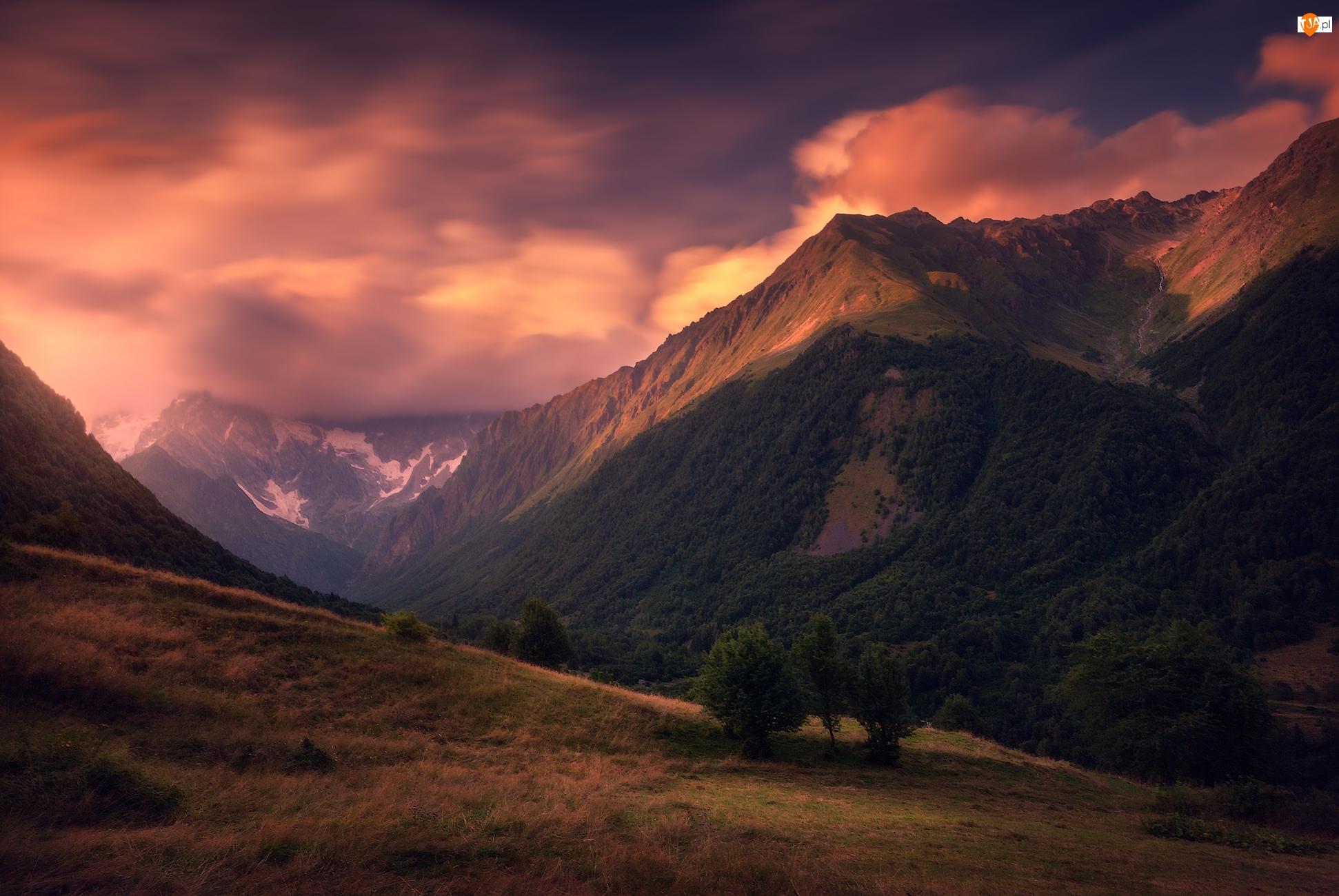 Drzewa, Chmury, Wzgórze, Góry, Niebo