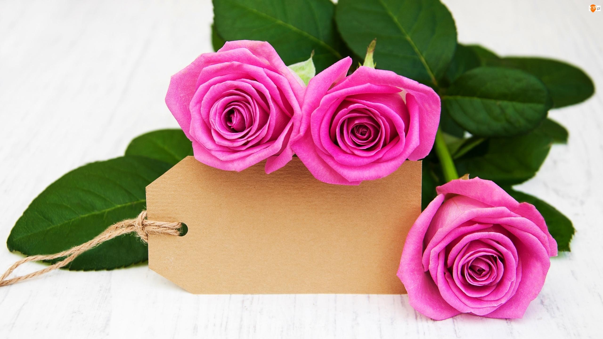 Różowe, Róże, Zawieszka, Trzy, Sznurek, Kartonik, Liście