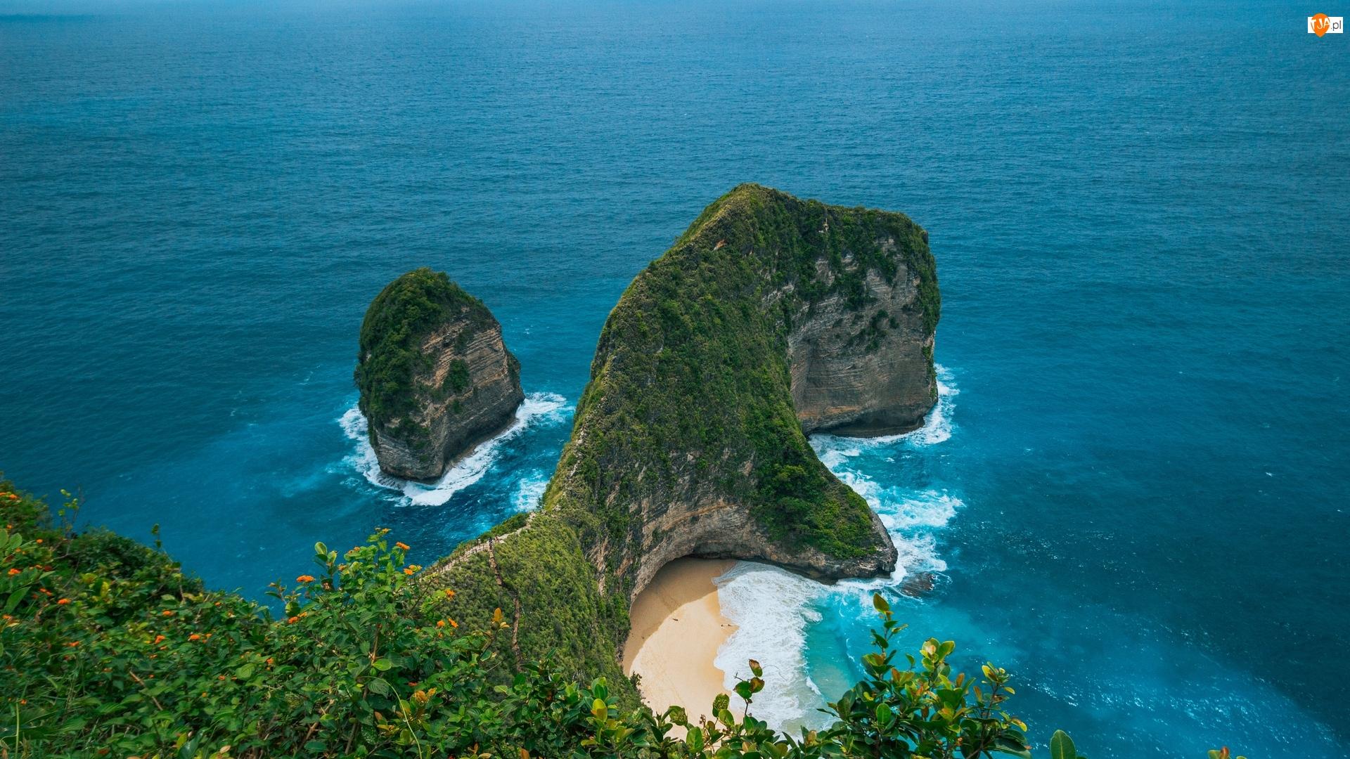 Klif, Plaża Kelingking Beach, Indonezja, Skały, Nusa Penida, Roślinność, Morze