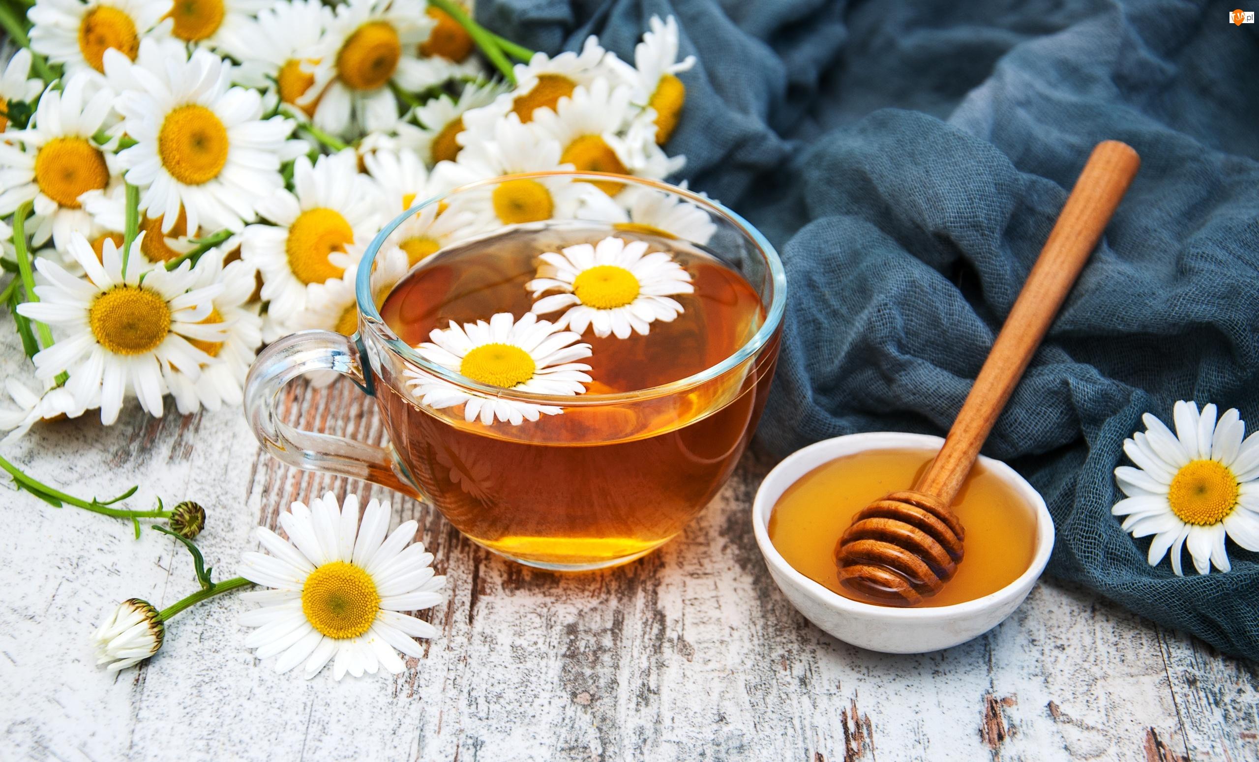Rumianek, Herbata, Przyroda, Filiżanka, Miód, Kwiaty