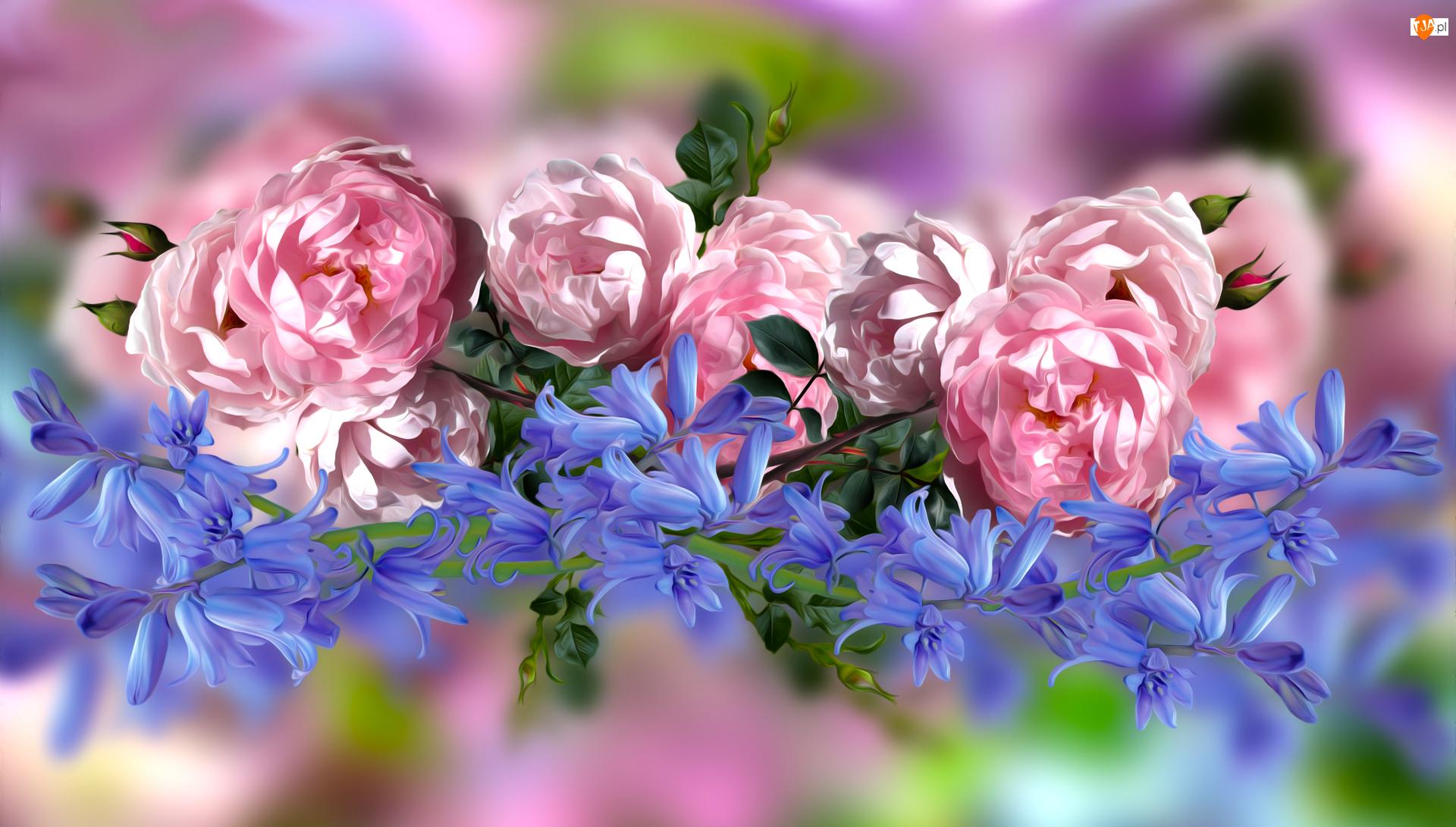 Grafika, Róże, Dzwonki