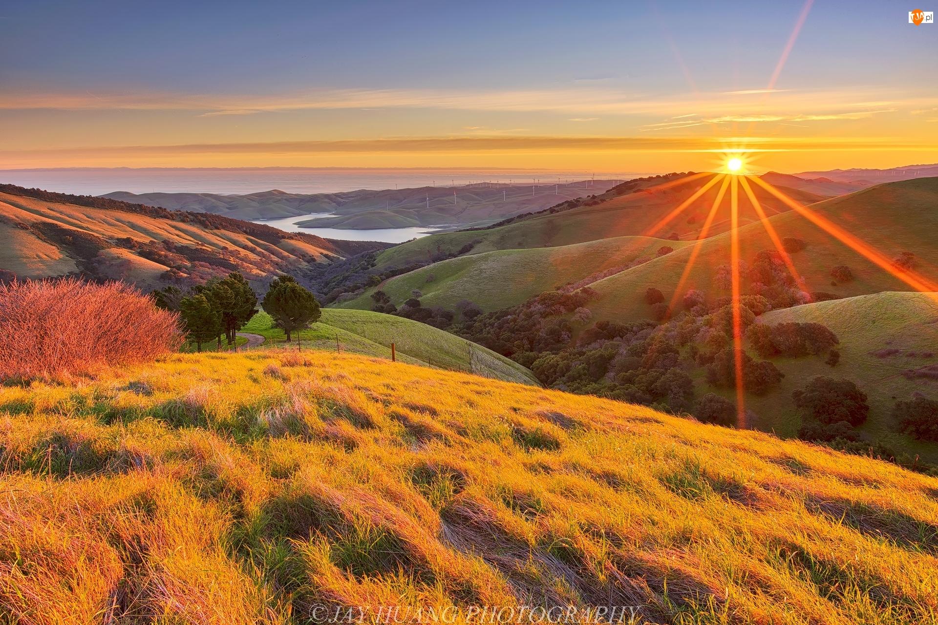 Stany Zjednoczone, Jezioro, Kalifornia, Promienie słońca, Dolina Livermore Valley, Drzewa, Krzewy, Góry, Wzgórza