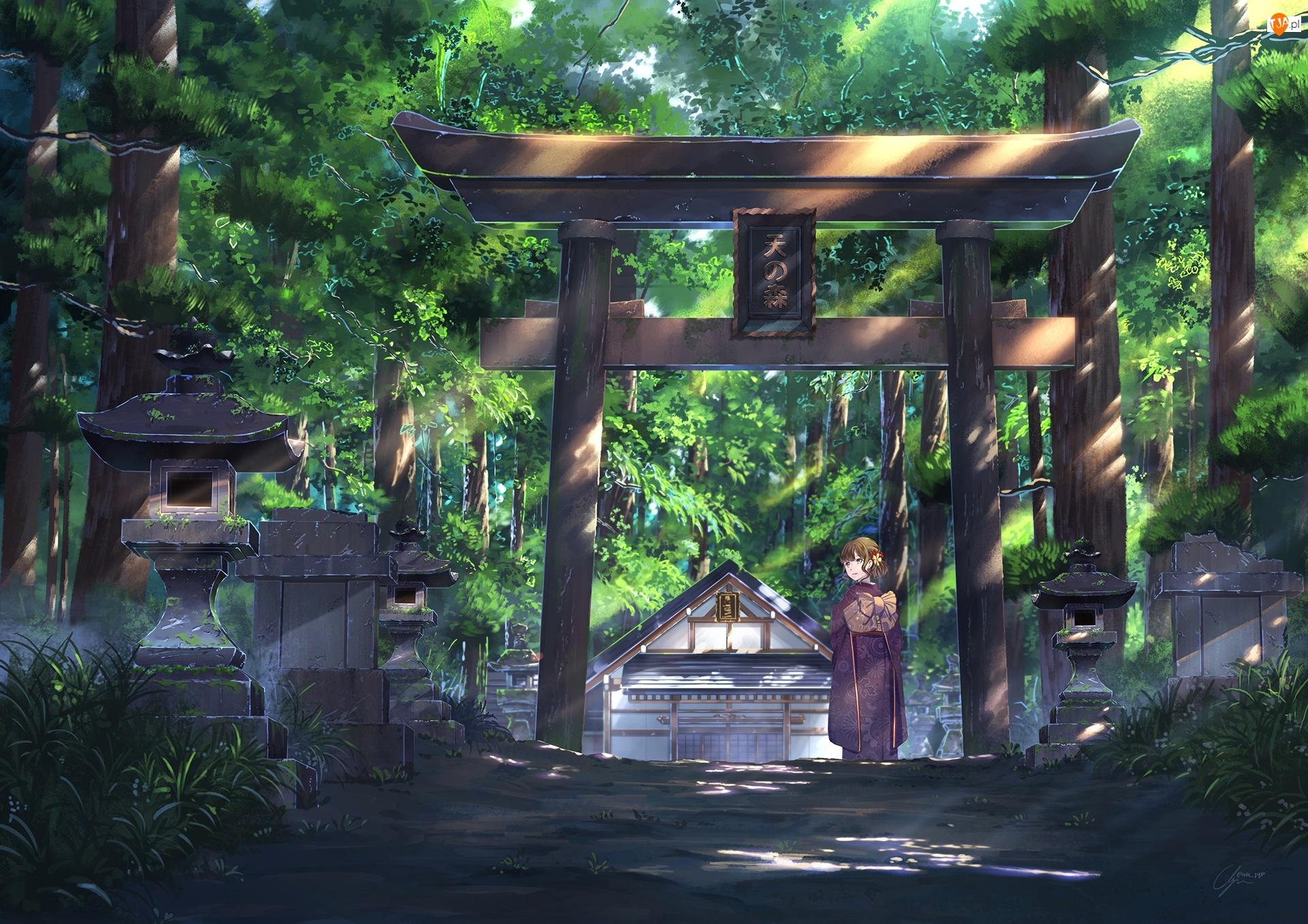 Świątynia, Anime, Brama, Las, Dziewczynka, Torii