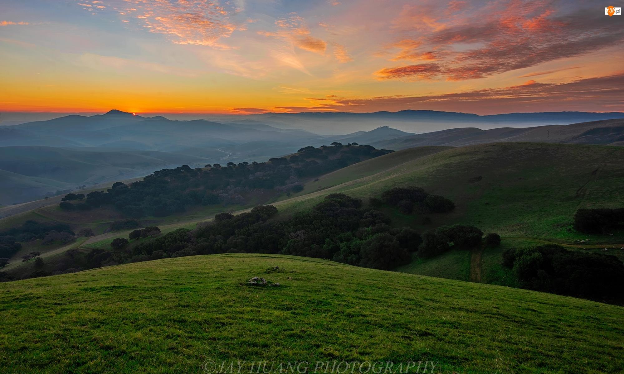 Chmury, Góry, Dolina Livermore, Kalifornia, Mgła, Drzewa, Stany Zjednoczone, Wzgórza