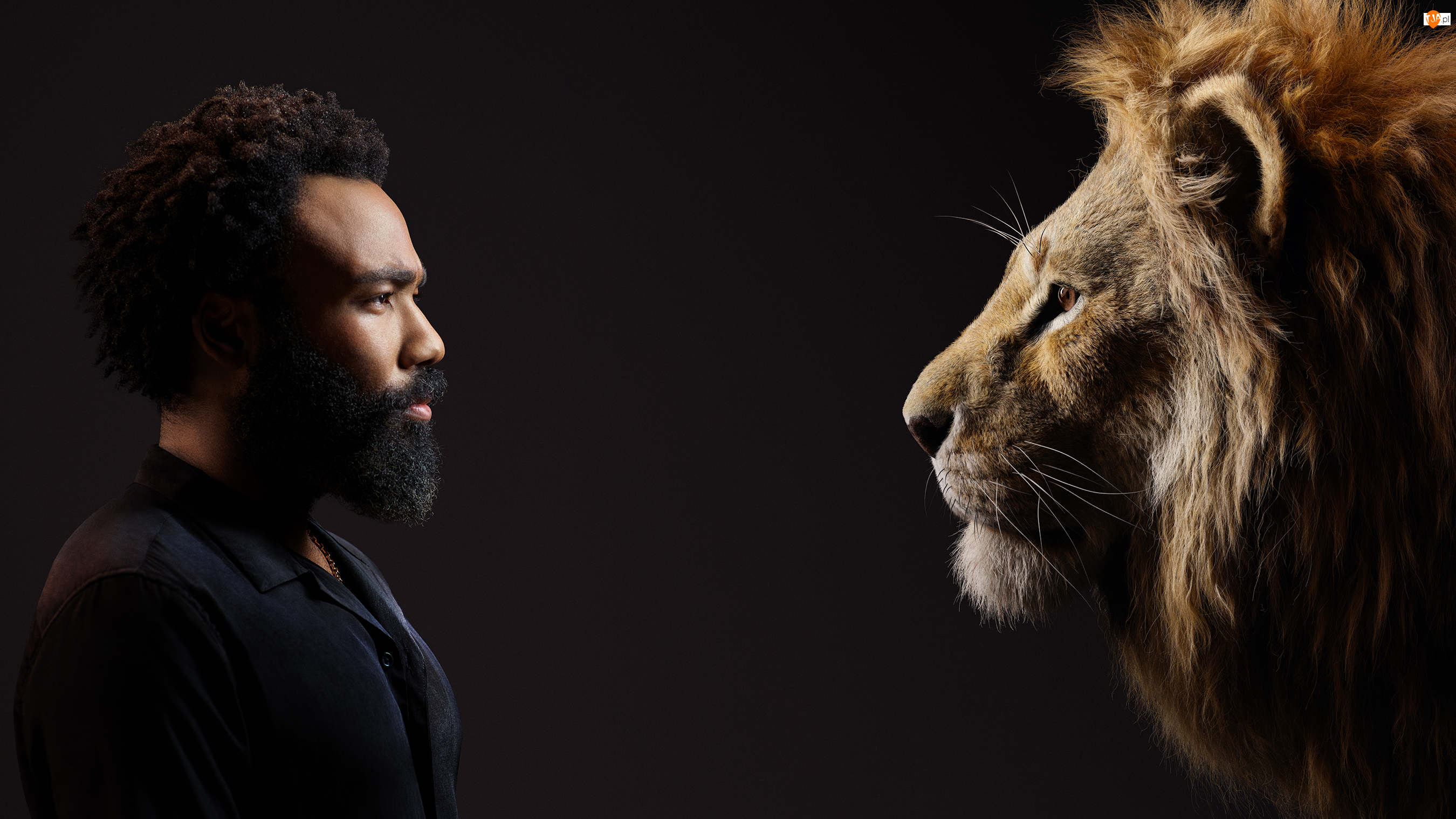 Król Lew, Film, Aktor, Lew, The Lion King, Donald Glover