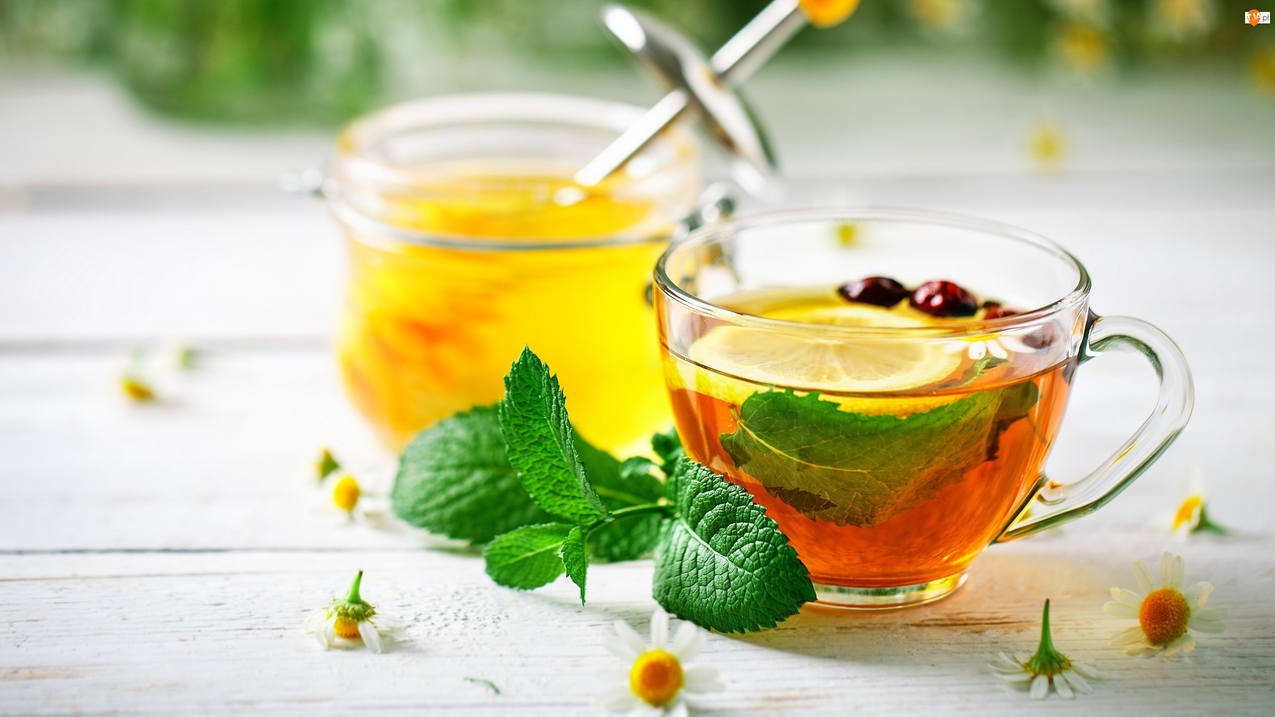 Herbata, Cytryna, Rumianek, Filiżanka, Miód, Słoik, Mięta