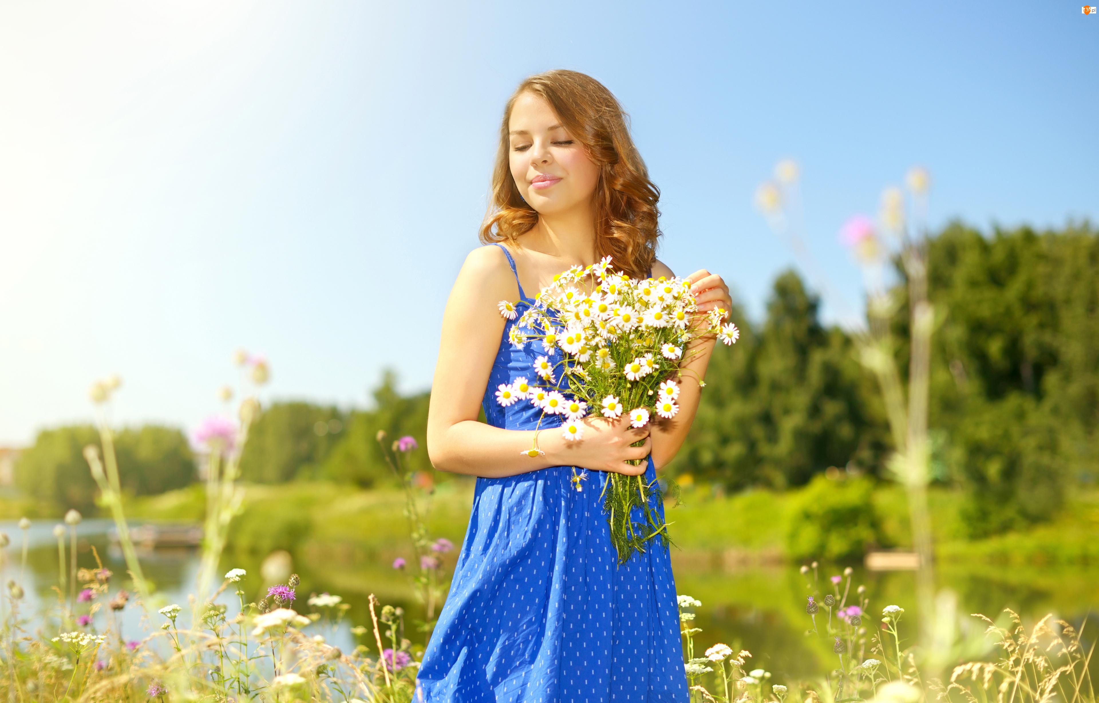 Kobieta, Niebieska, Bukiet, Lato, Rumianek, Kwiaty, Sukienka