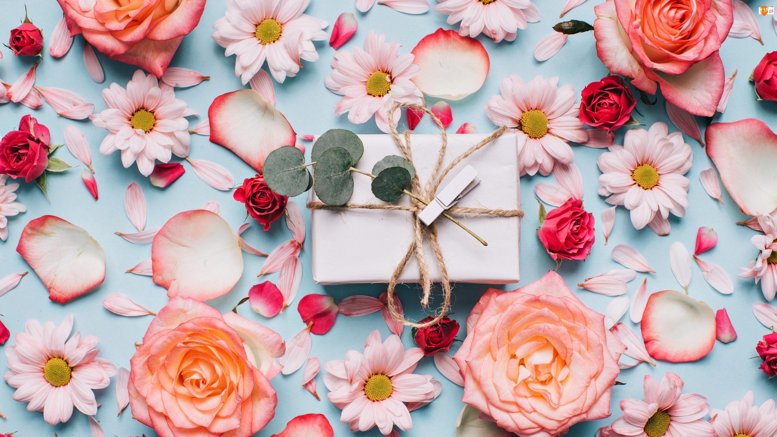 Chryzantemy, Płatki, Kompozycja, Róże, Klamerka, Prezent, Kwiaty